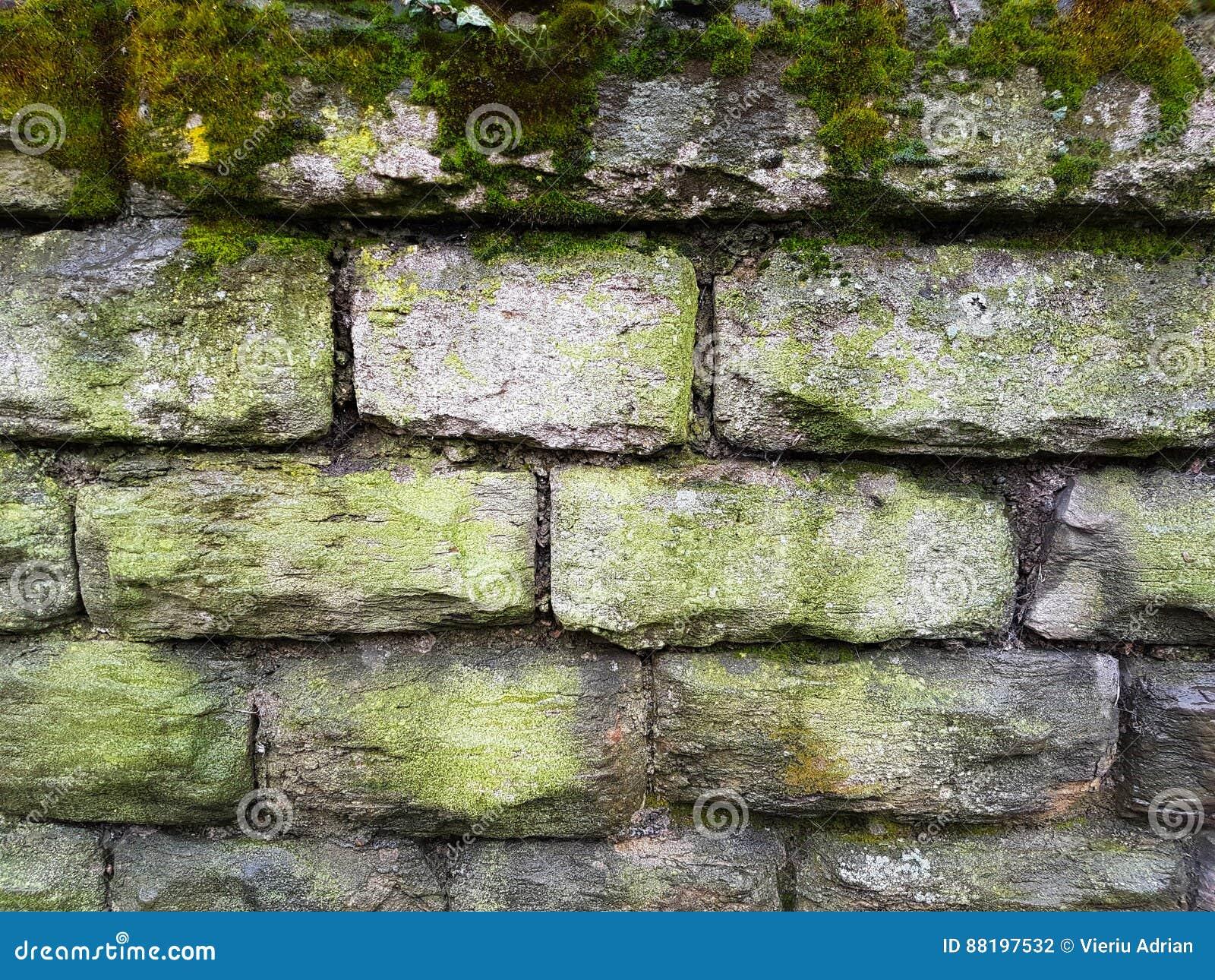 Muri il mattone costruzione di pietra della casa dell for Costo del mattone da costruire