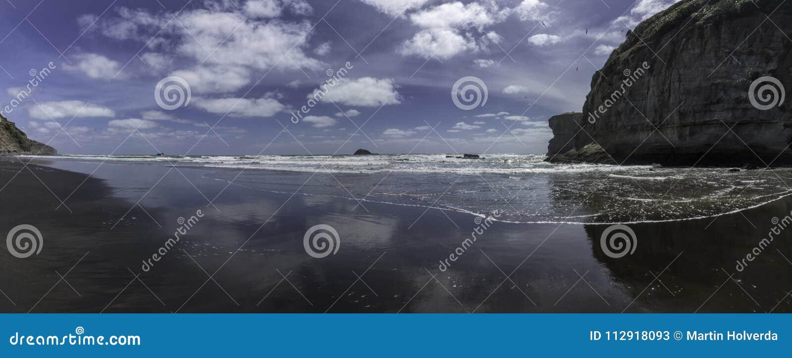 Muriwai maori da baía perto da areia do preto da viagem do dia da praia da colônia do albatroz