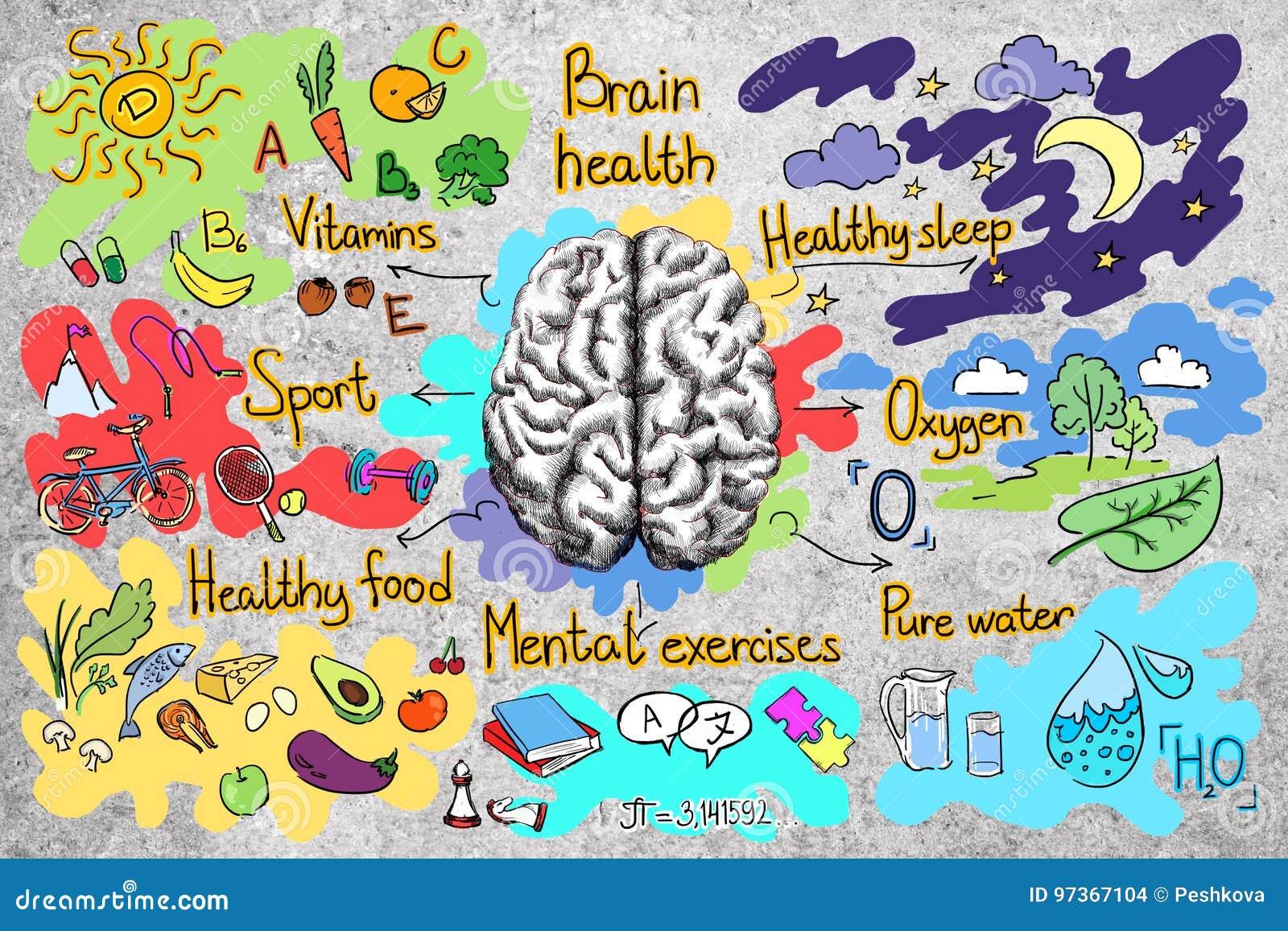 Muro de cimento com esboço saudável do cérebro