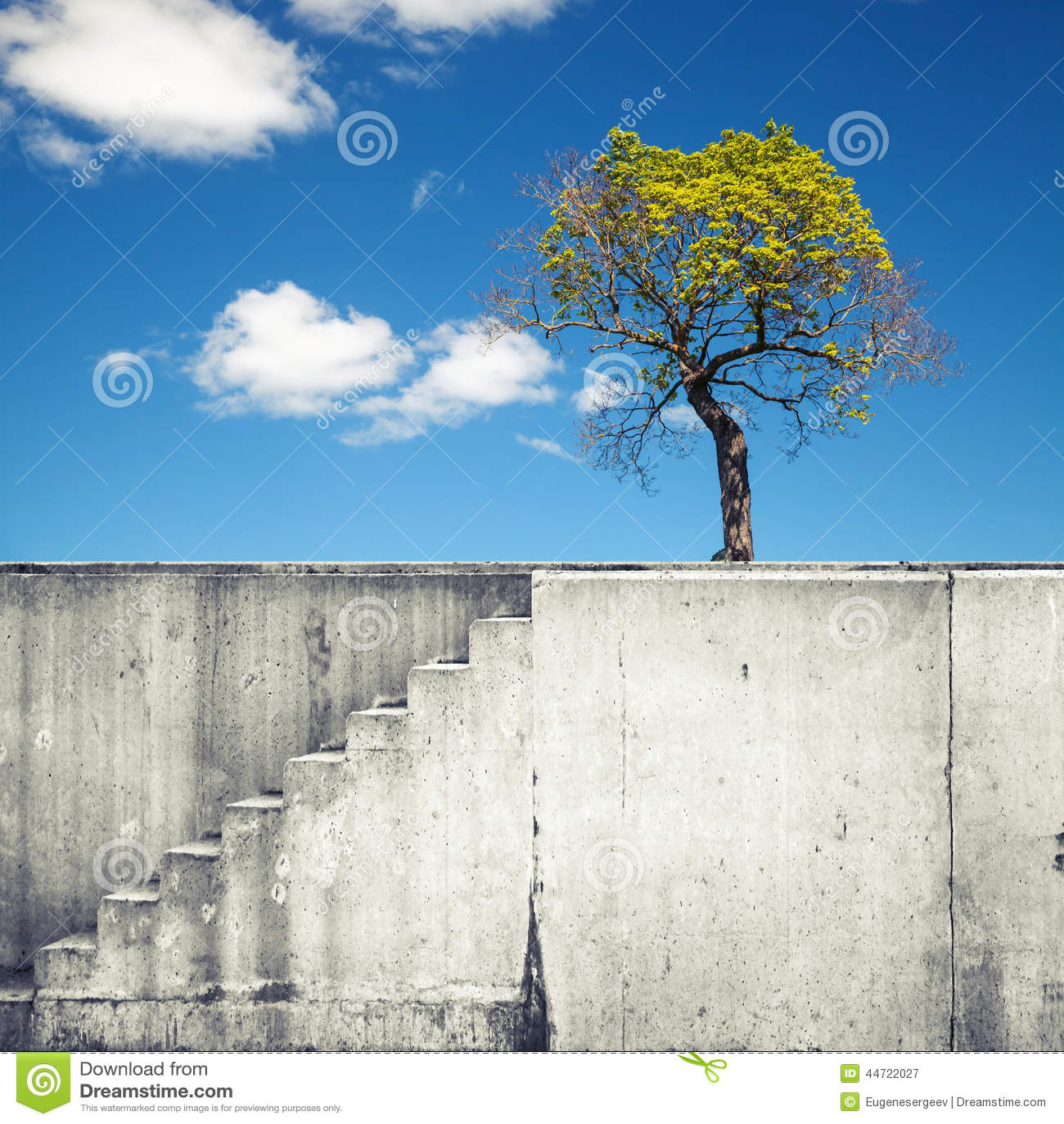 Muro Di Cemento Bianco Con Le Scala Ed Albero Sopra Cielo Blu Fotografia Stock - Immagine: 44722027