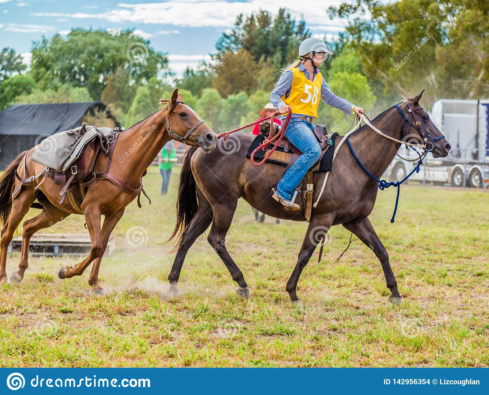 Murrurundi,NSW,澳大利亚,2018年,2月24日:在范围畜牧业者的挑战的国王的竞争者