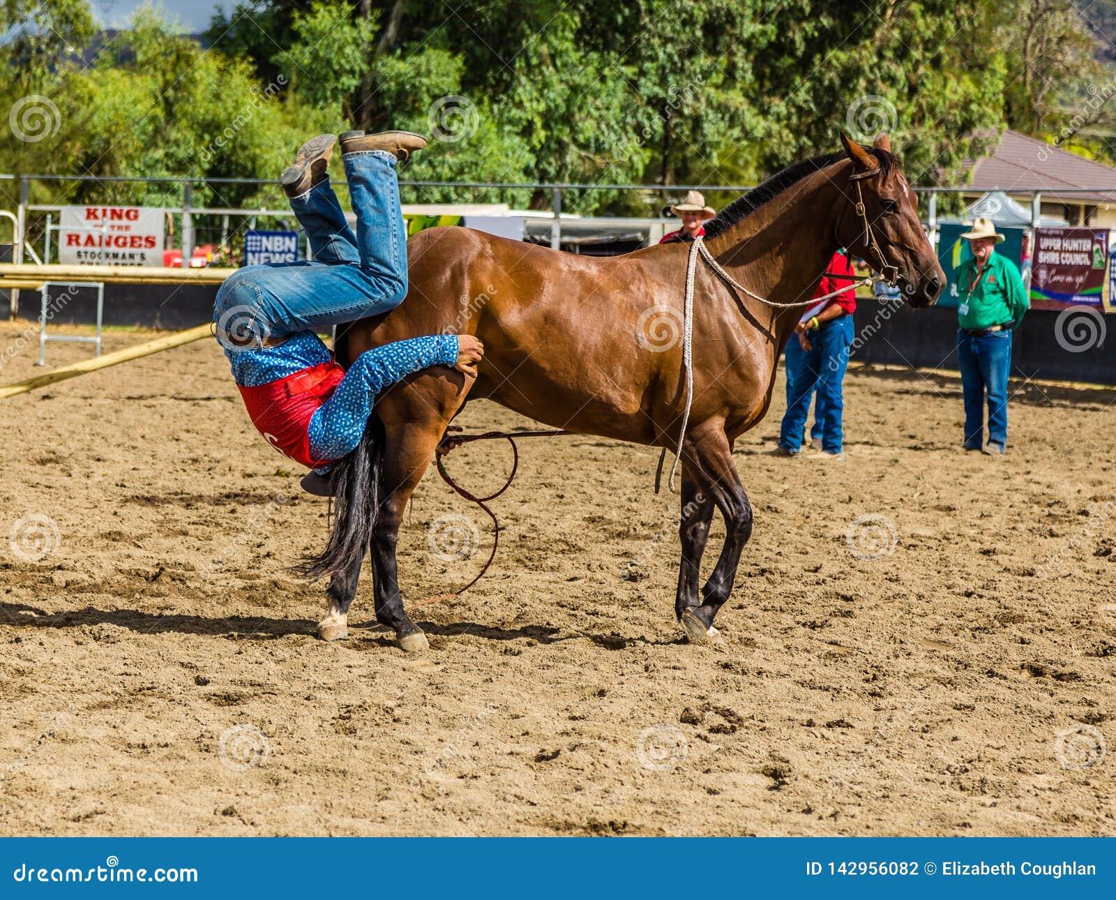 Murrurundi,NSW,澳大利亚,2018年2月24日:在范围无鞍自由式竞争的国王的竞争者