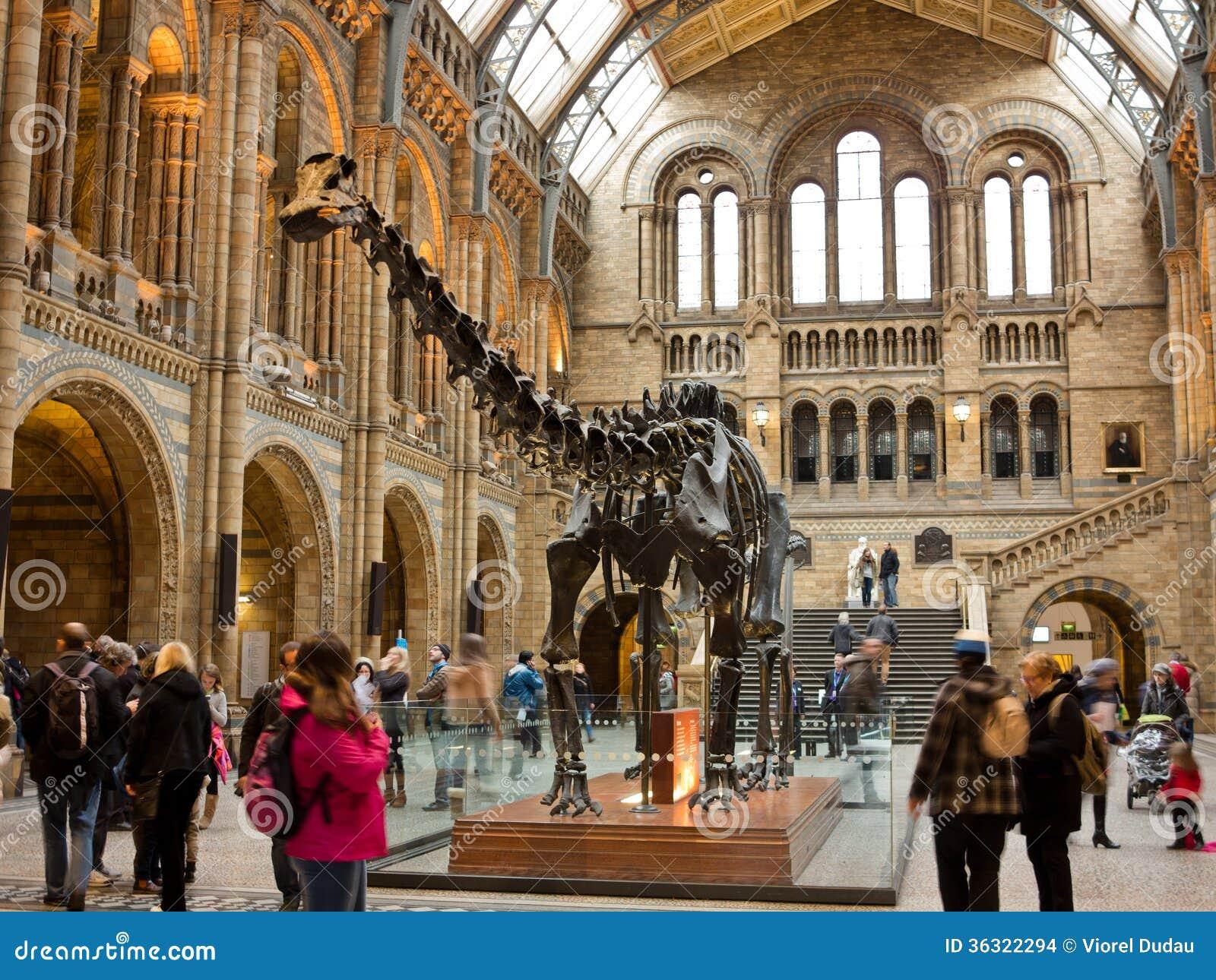 Musée d histoire naturelle à Londres