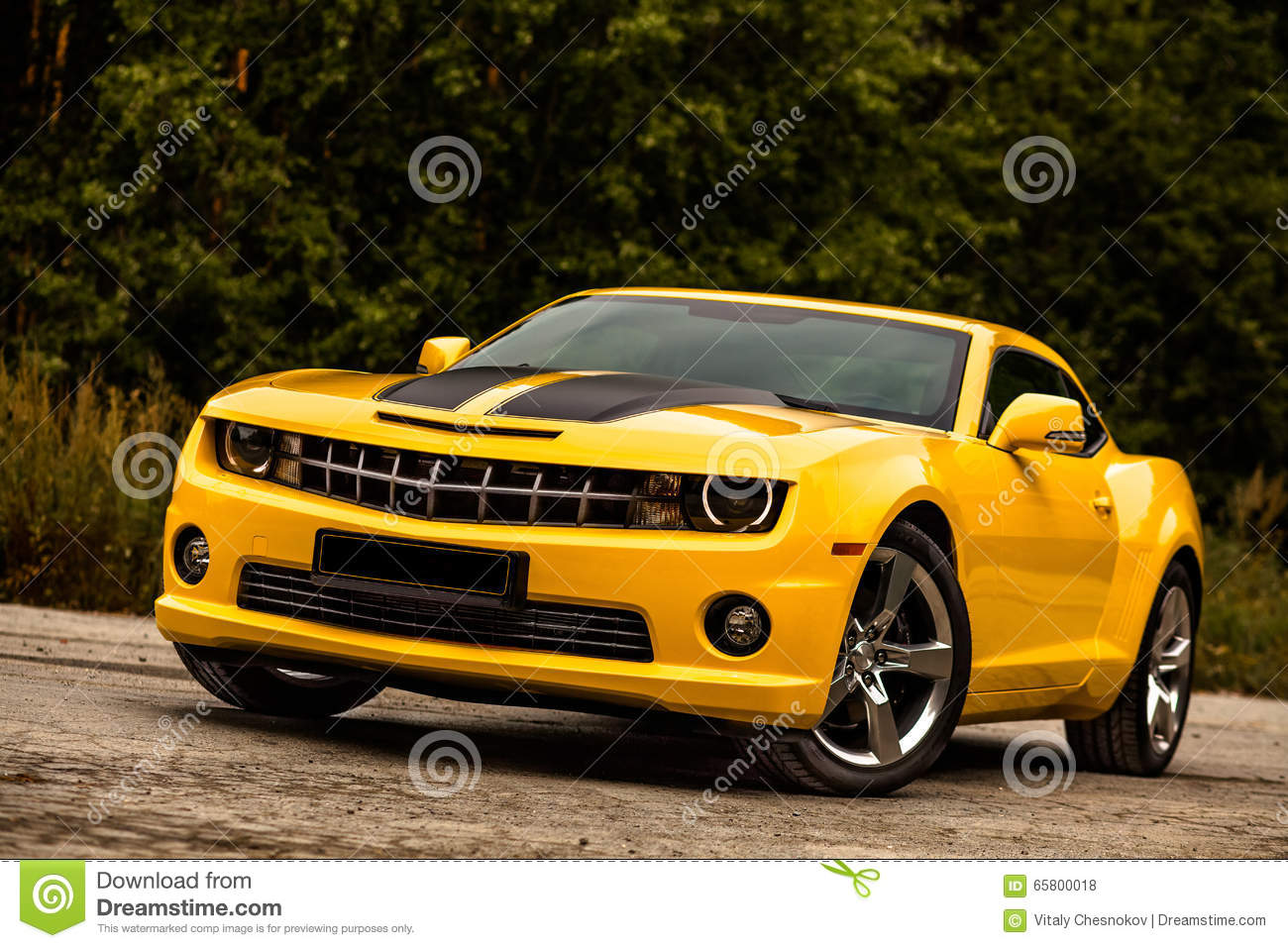 Muscle Car Bumblebee Stock Photo Image Of Coupe Show 65800018
