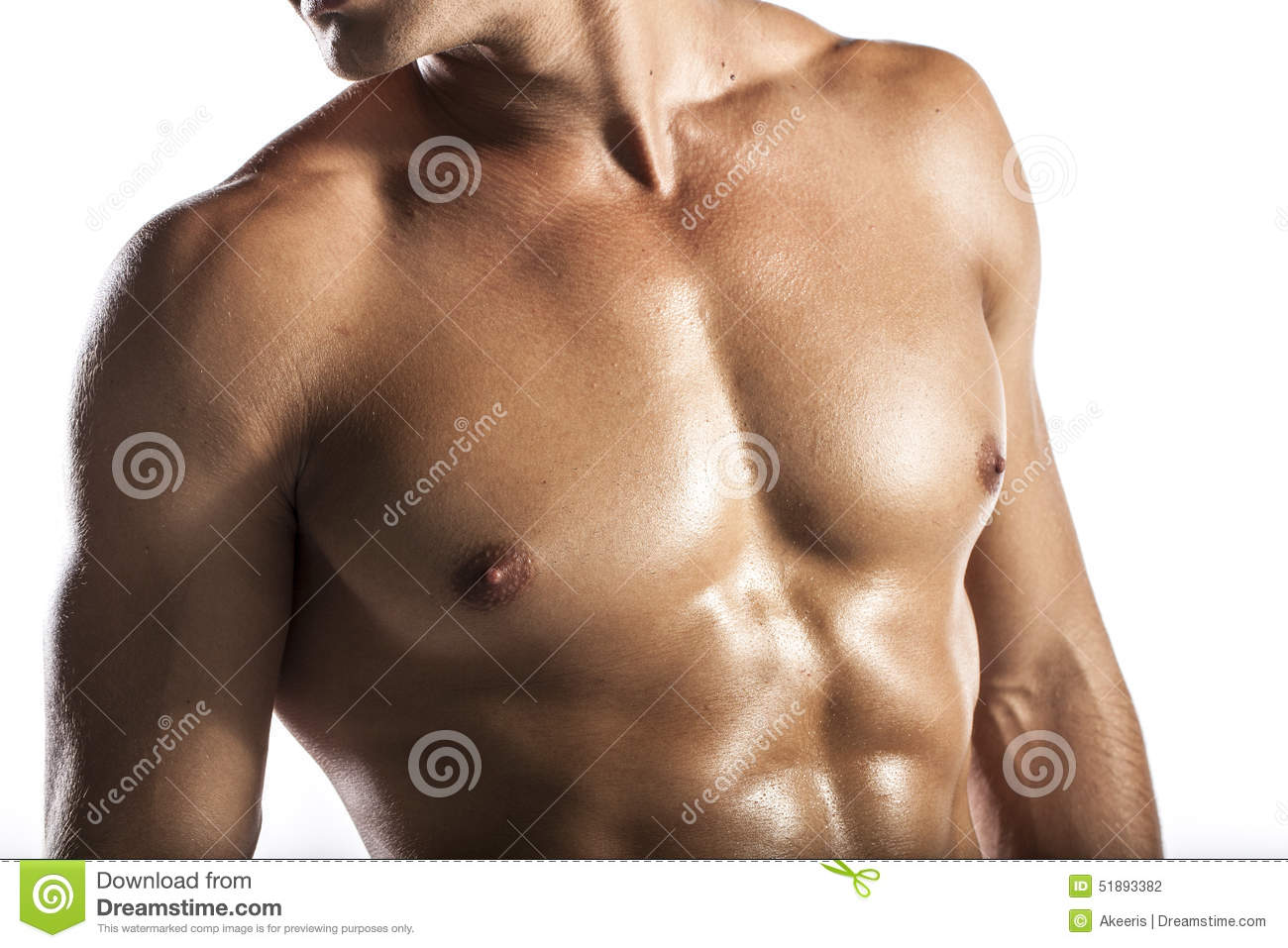 Muscle Man Stock Photo Image Of Muscular Chest Back 51893382