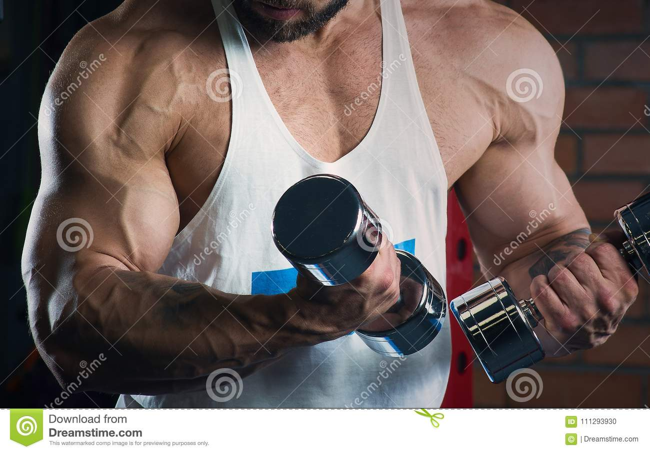 Muscular arms doing biceps with dumbbells in the gym. Man with beard