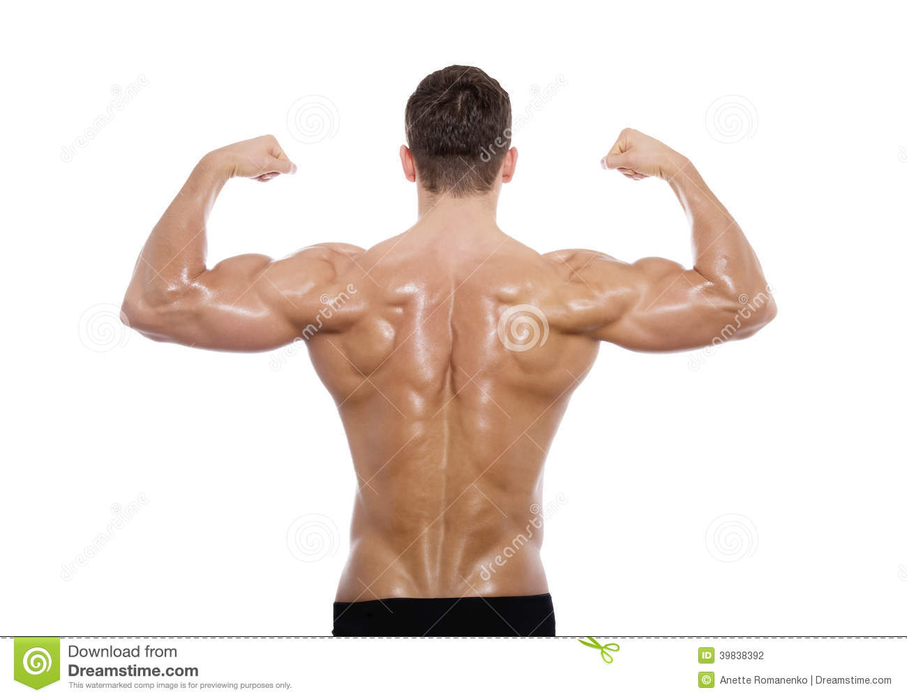 muscular male back stock photo image of good pack looking 39838392