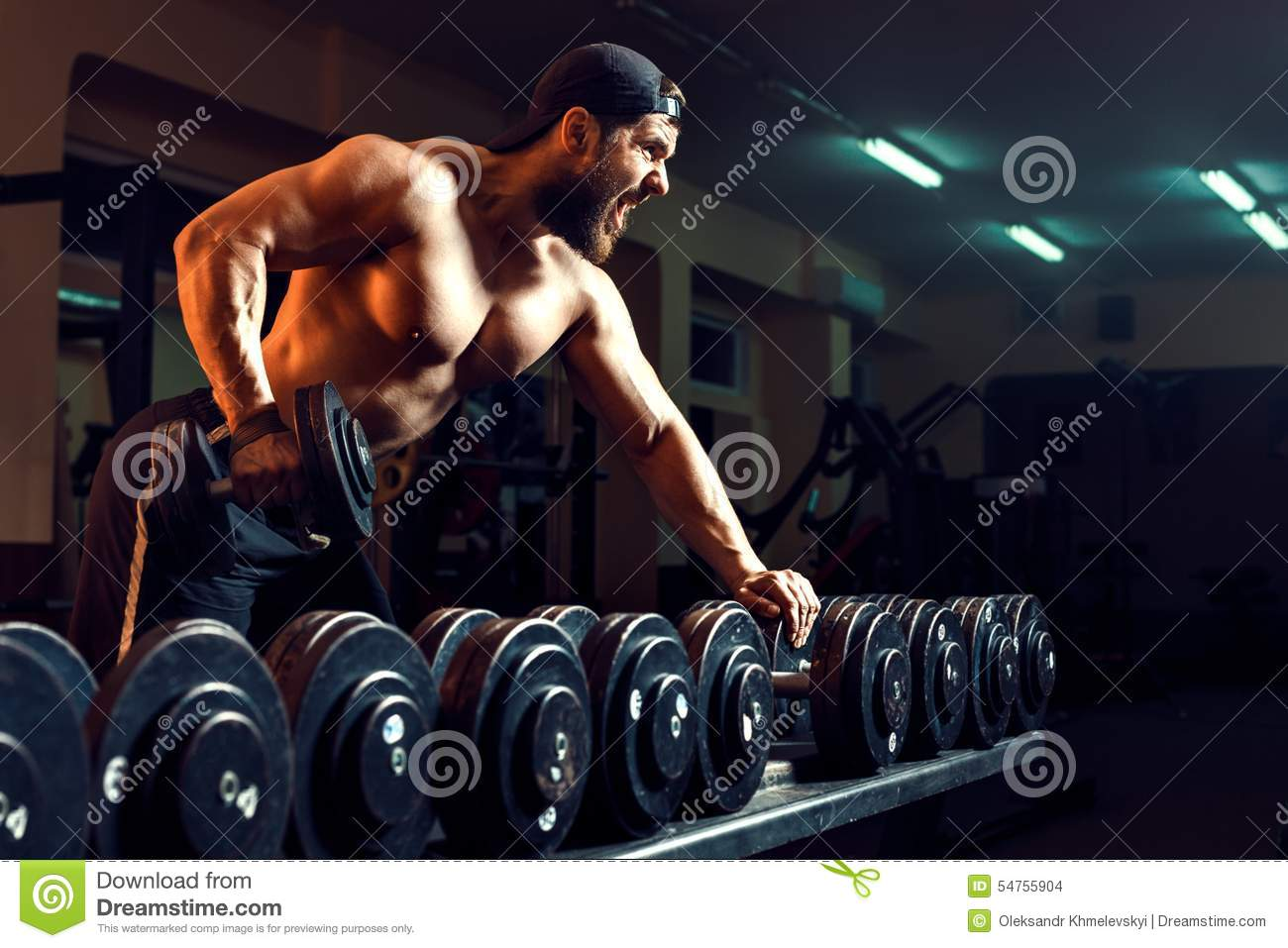 Download Muscular Male Bodybuilder Working Out In Gym Stock Photo - Image of male, power: 54755904
