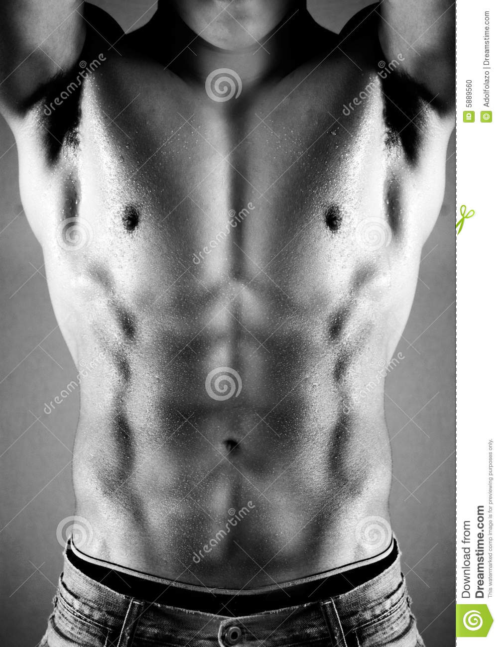 Strong Athletic Man Fitness Model Torso Showing Muscular