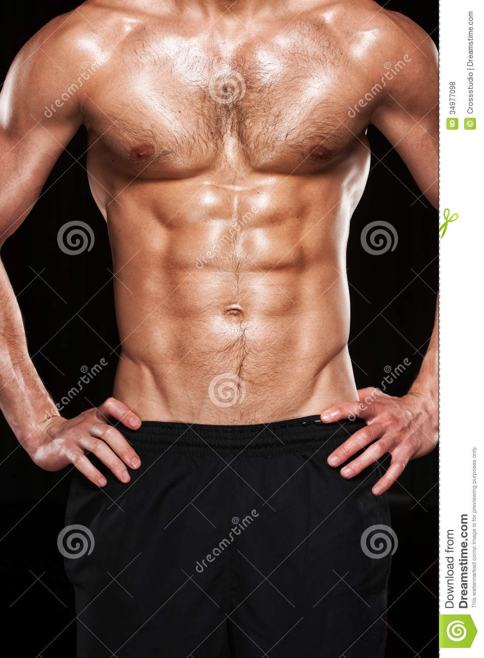 Muscular Male Torso Stock Photo Image Of Abdominal 34977098