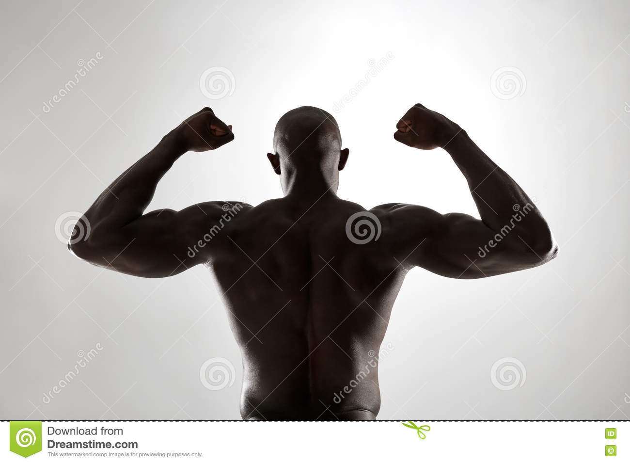 Muscular Mans Back In Silhouette Stock Image