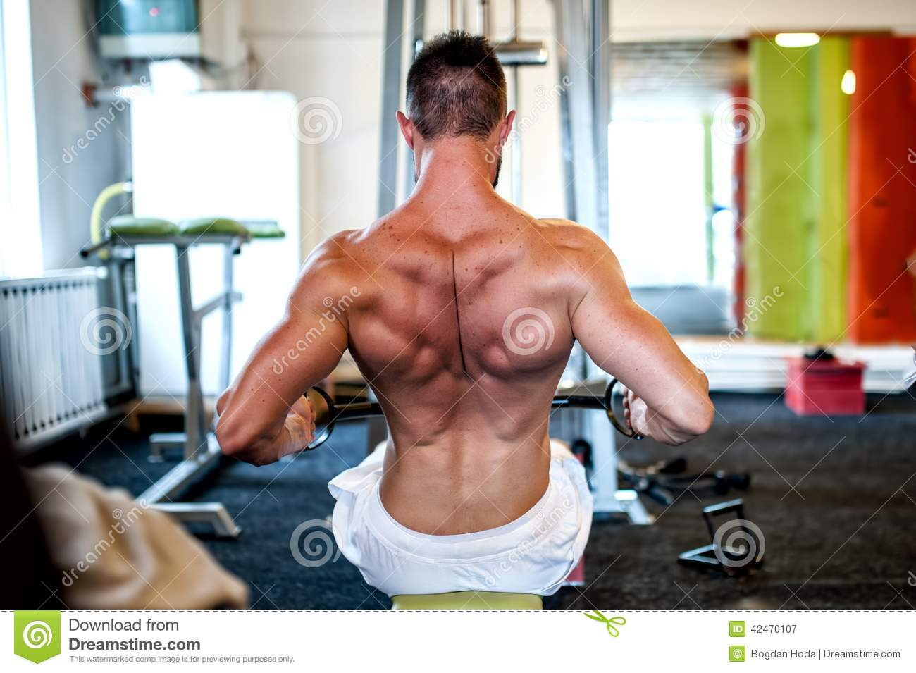 ... Photo: Muscular man on daily workout routine at gym, close-up of back