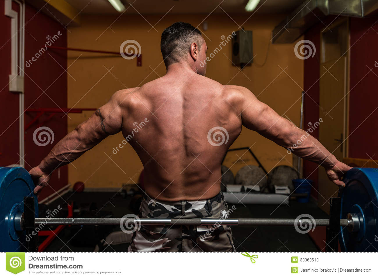 muscular wings back stock photos - image: 33969513, Muscles