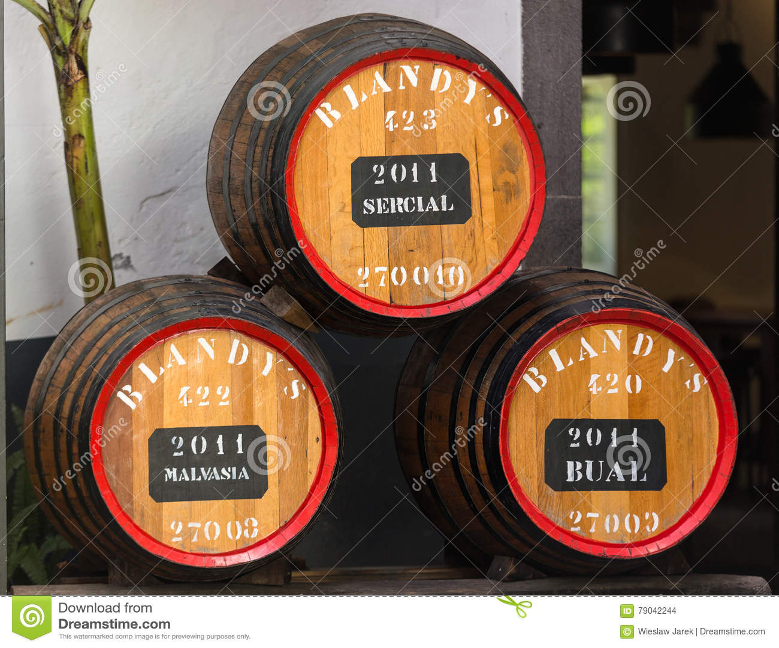 Museet - lagring av dyrt tappningvin Madera Enorma trummor markeras av data av vin