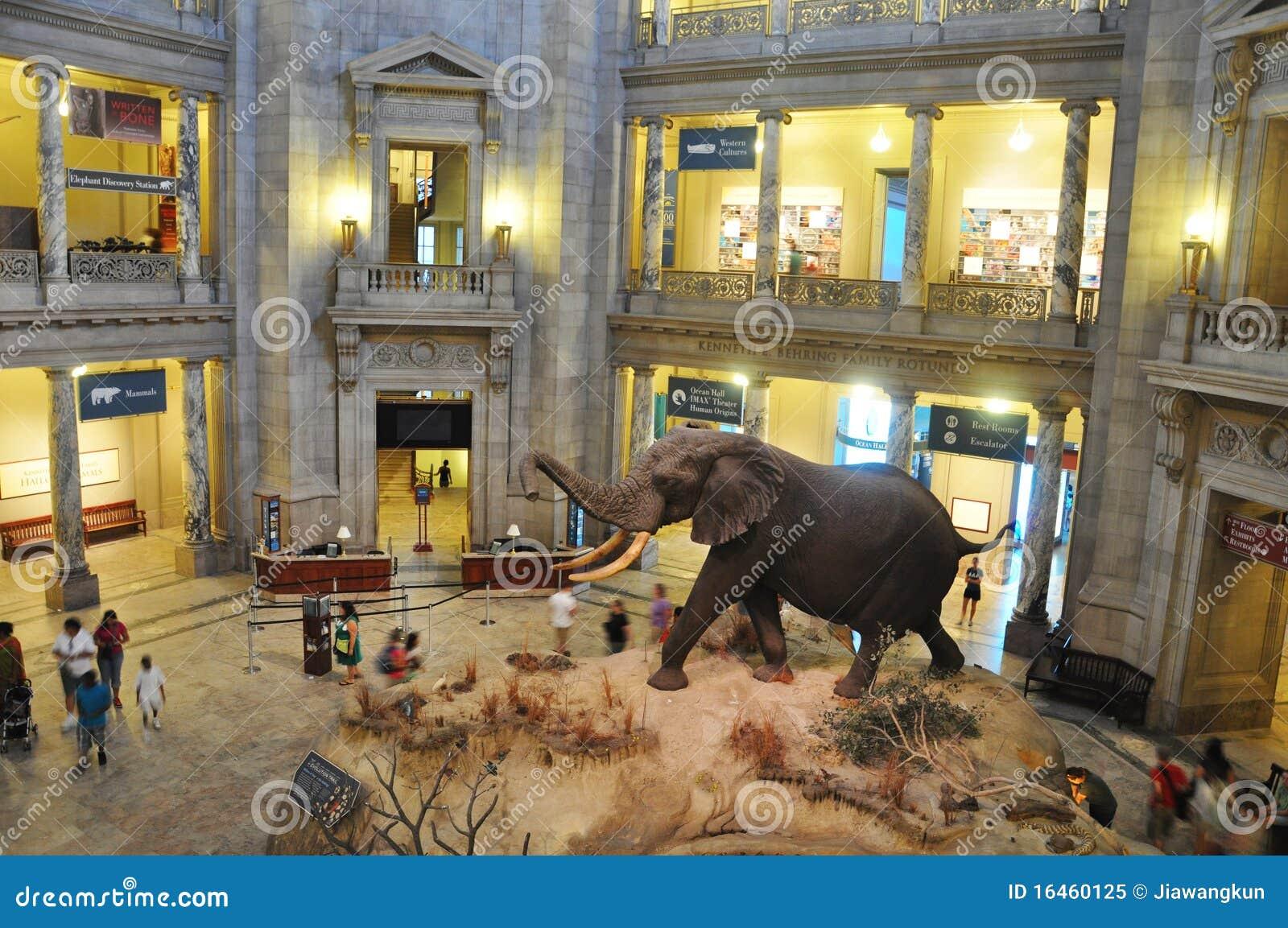Museu Nacional da História natural