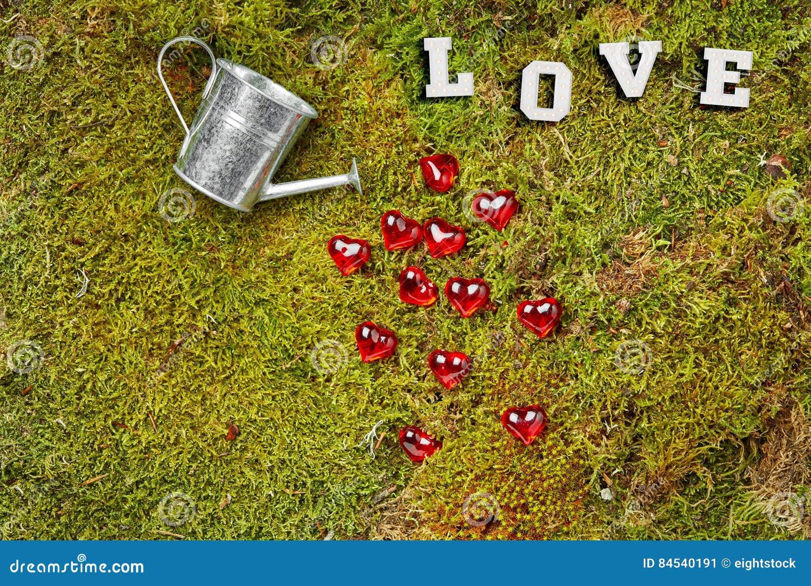 Musgo del bosque con la poder y los corazones