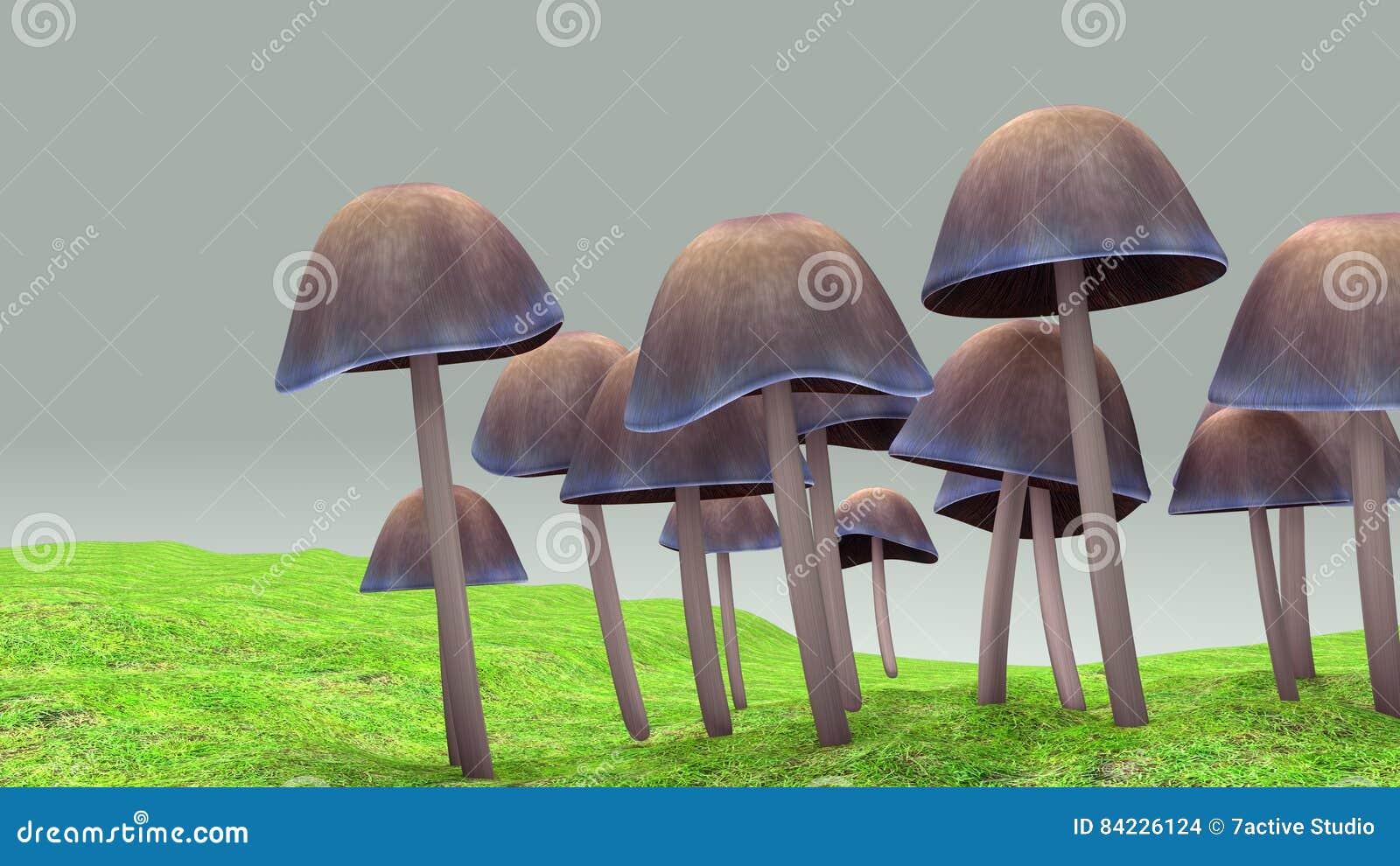 Mushroom stock illustration  Illustration of organic - 84226124
