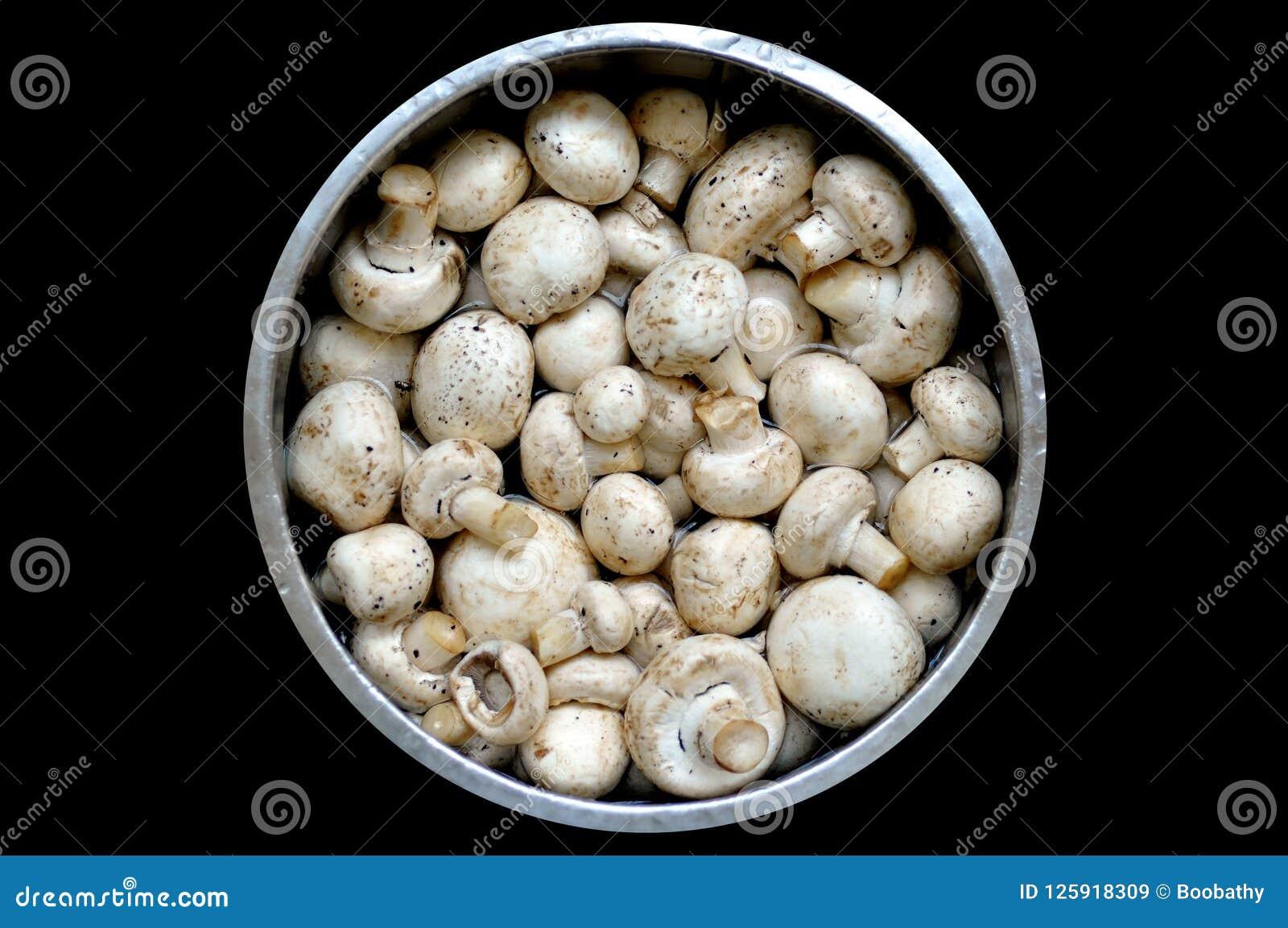 Mushroom on market