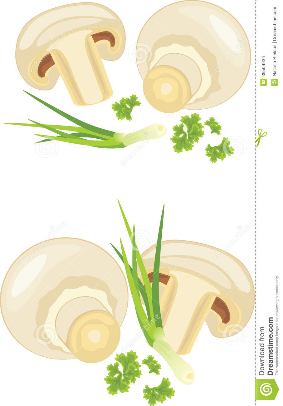 Mushrooms with parsley and chives isolated on the