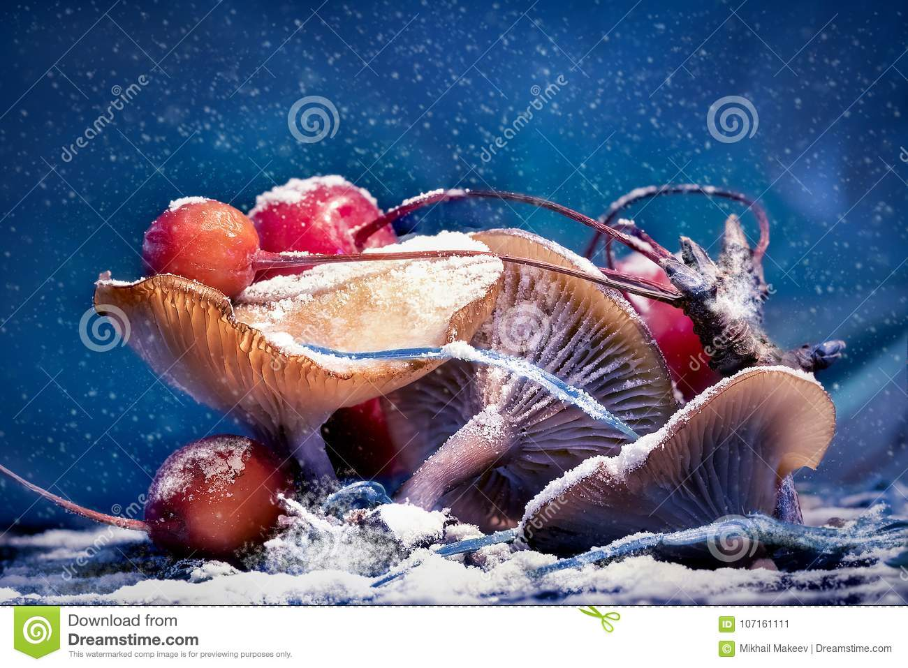 Mushrooms and red berries in snow and frost on a blue background. Christmas artistic image