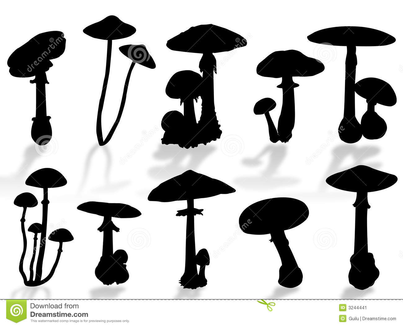 Mushrooms silhouette stock image image 3244441