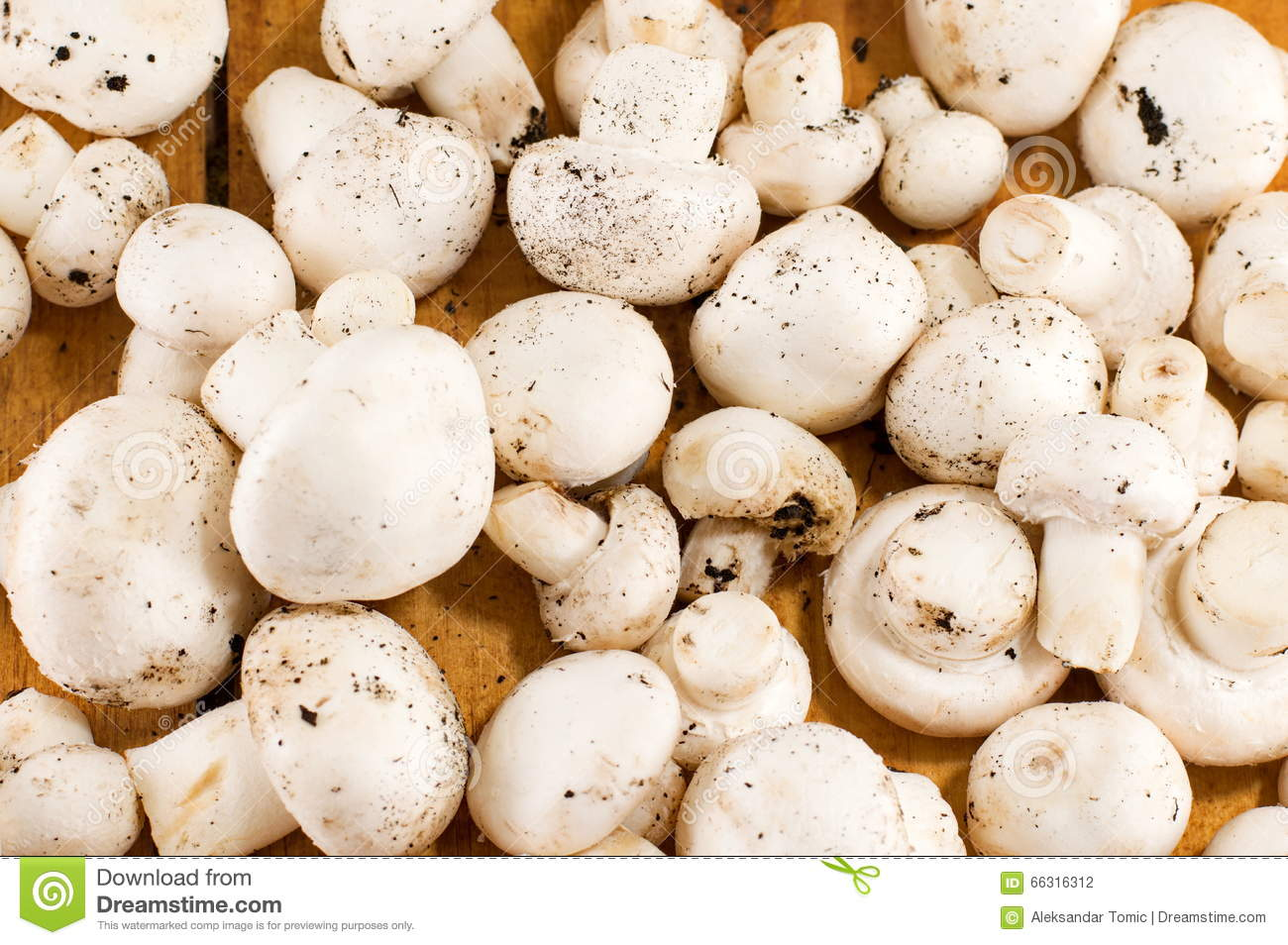 how to make wooden mushrooms