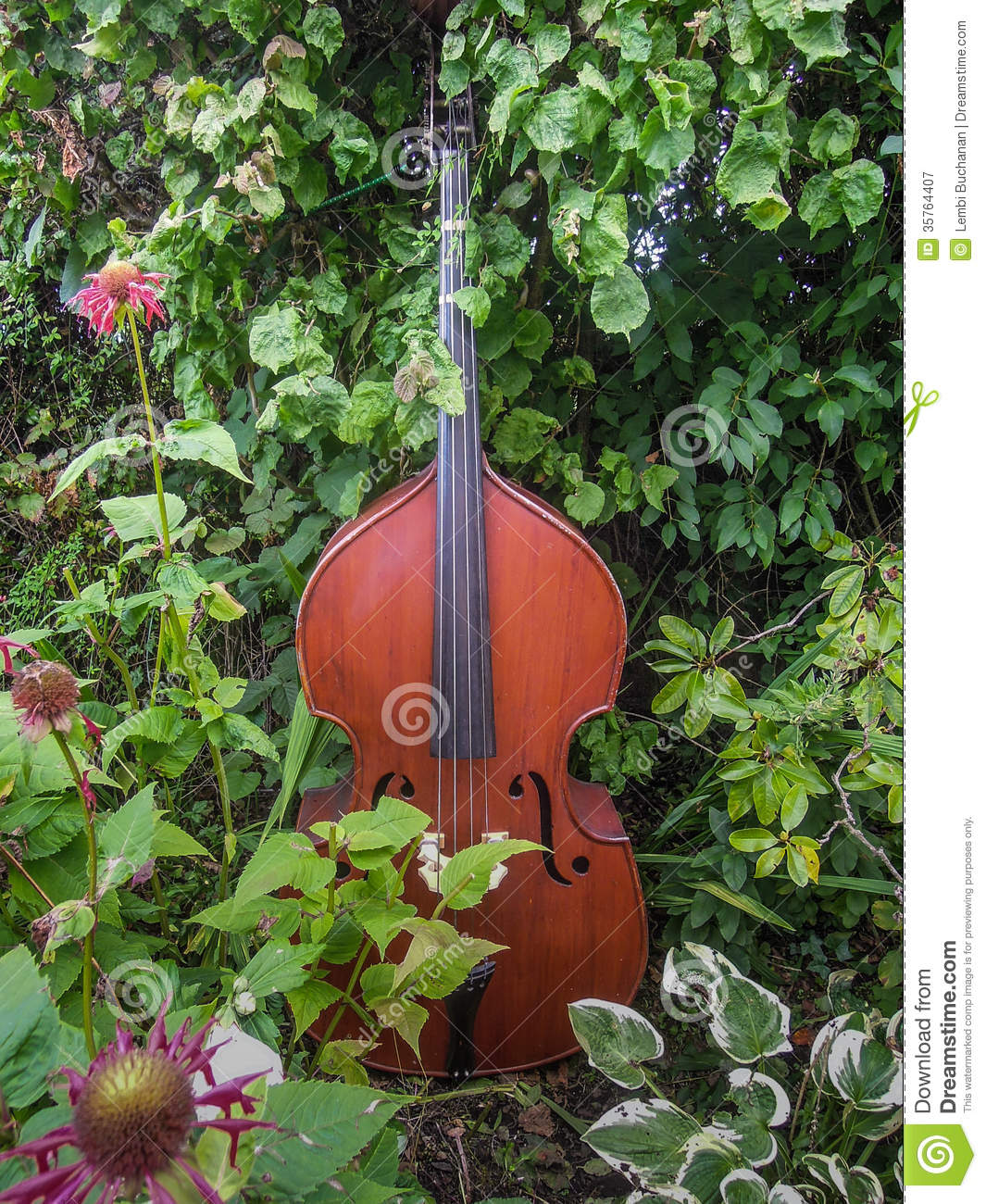 Music In The Garden Royalty Free Stock Photography Image