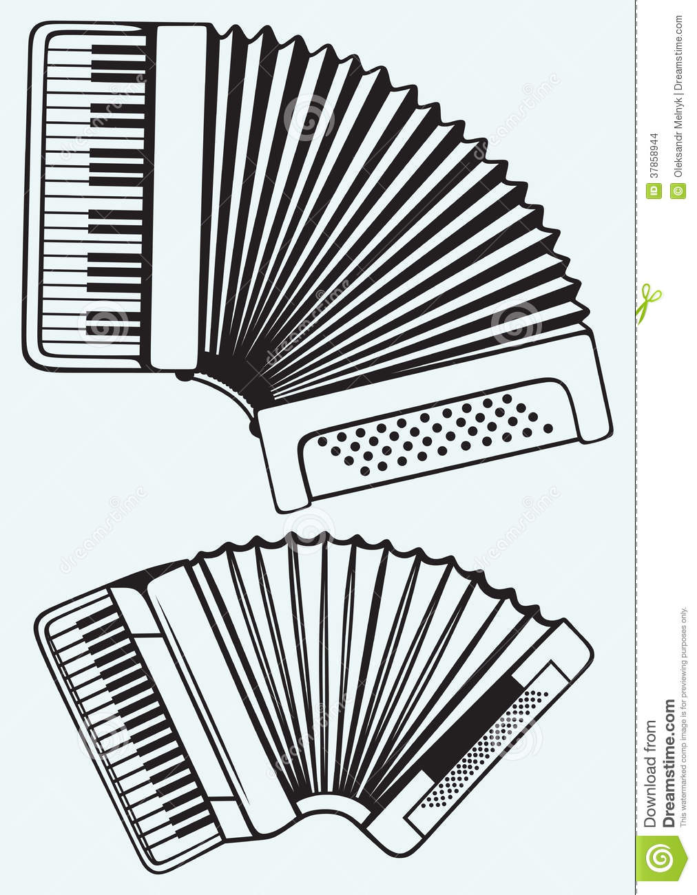 music instruments  accordion stock images