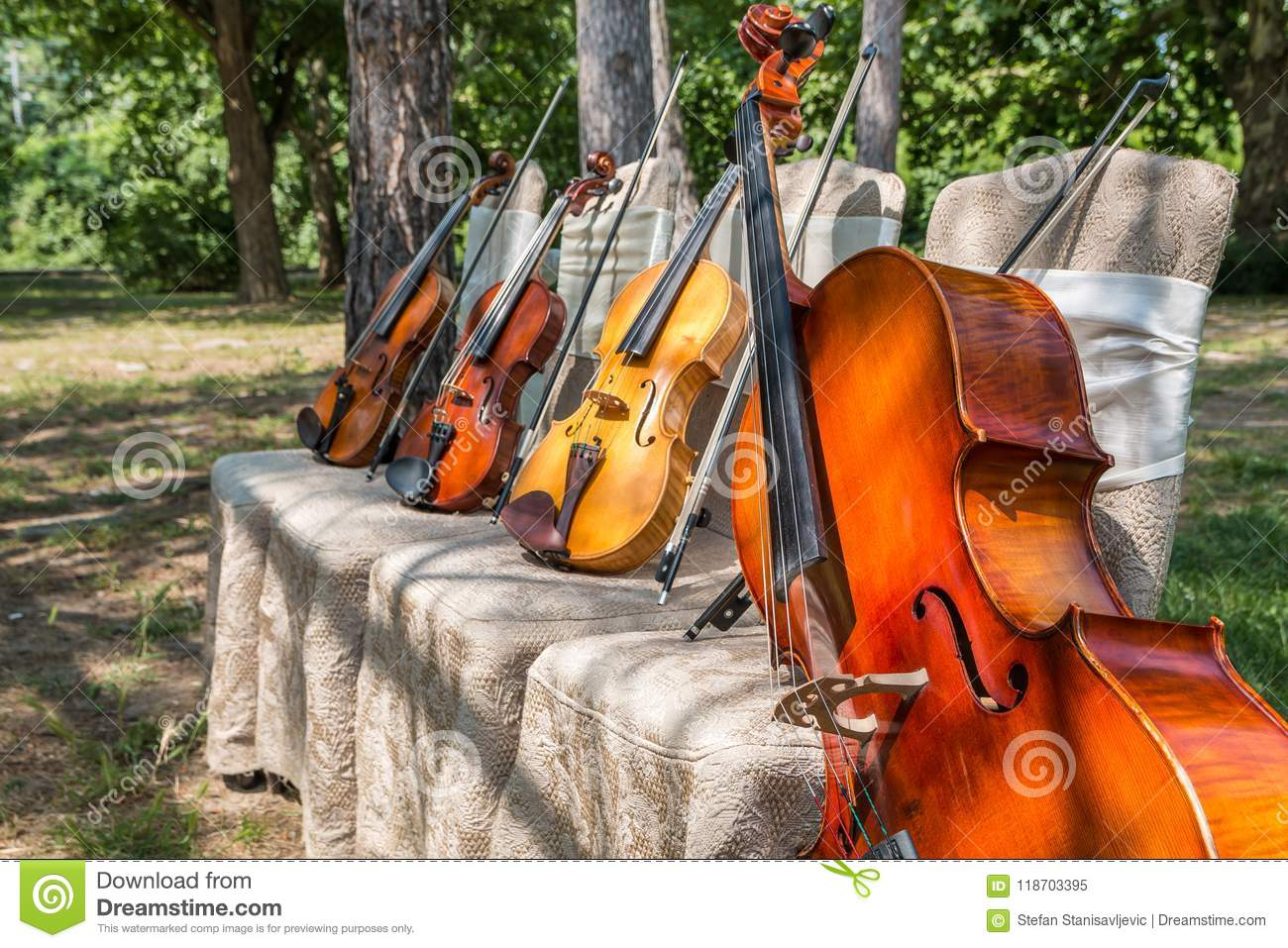 Music Instruments In Nature Stock Image - Image of