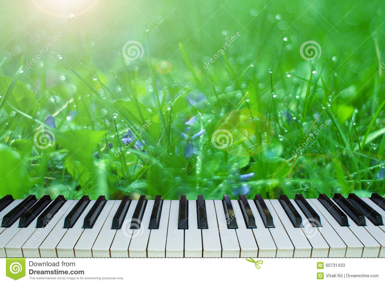 music in nature Beauty of nature poem poem about the music in nature i was inspired to write a poem about nature sounds after playing my guitar outside trying to harmonize with all the sounds nature has to offer.
