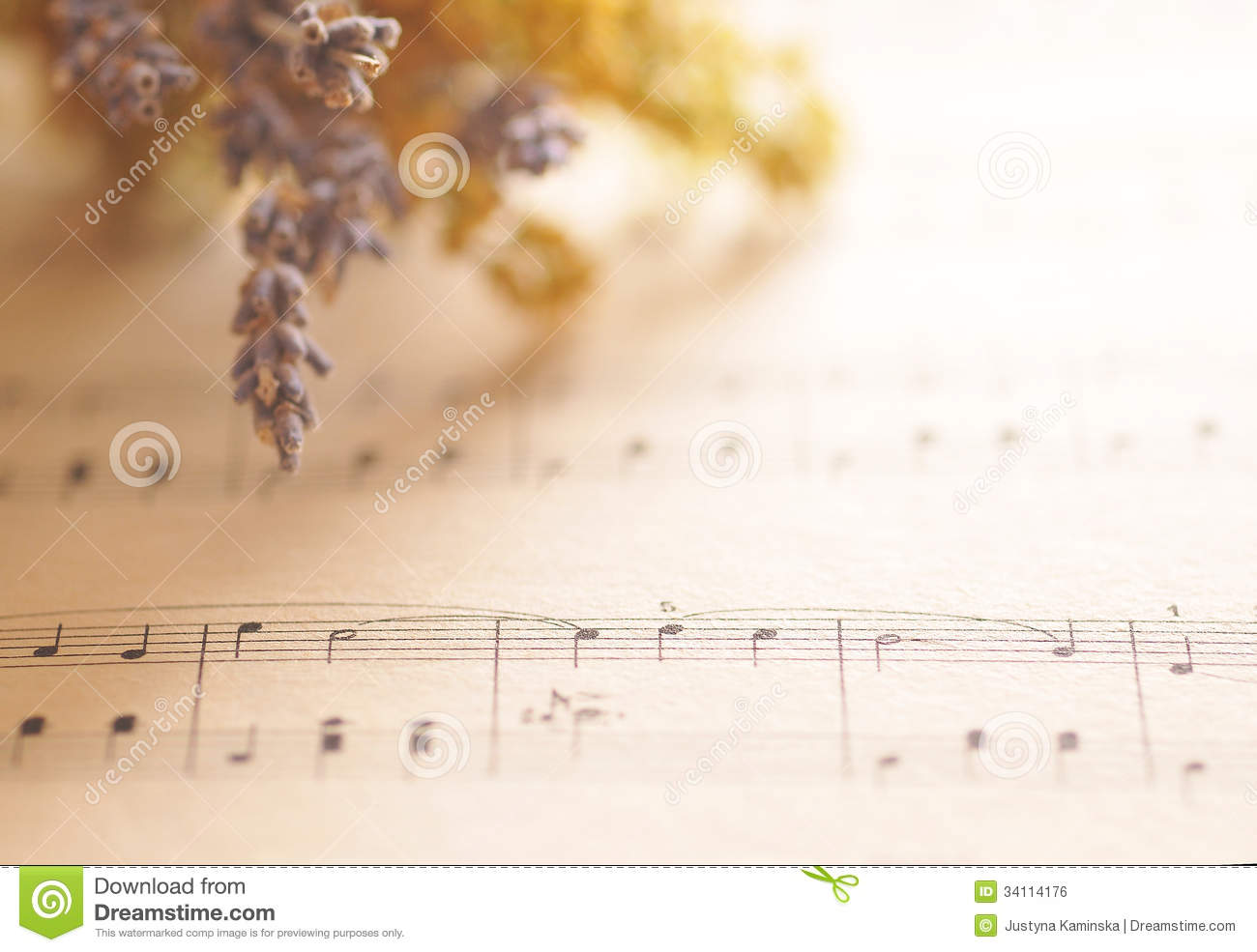 Black And White Music Notes Background Music Notes With Flowe...