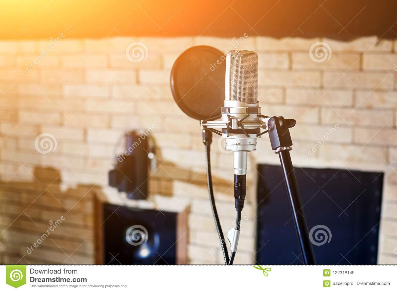 Music studio. Silver condenser microphone with pop filter