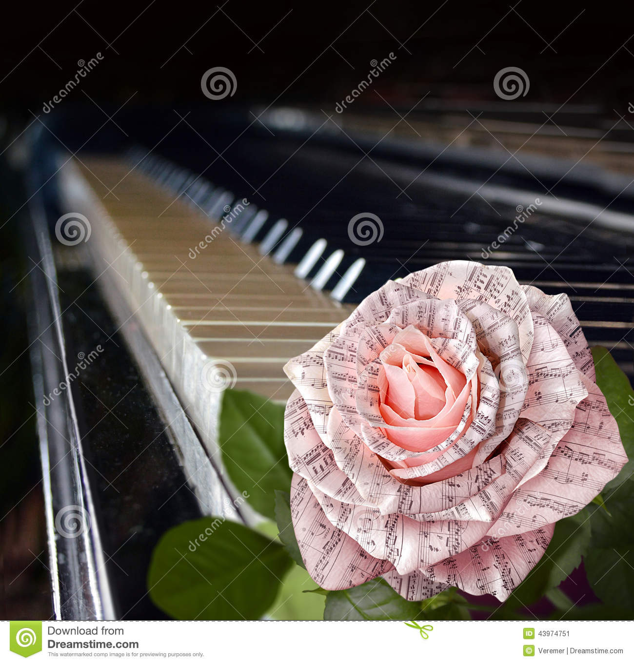 Music symbol beautiful pink rose with notes stock image image of music symbol beautiful pink rose with notes biocorpaavc Images