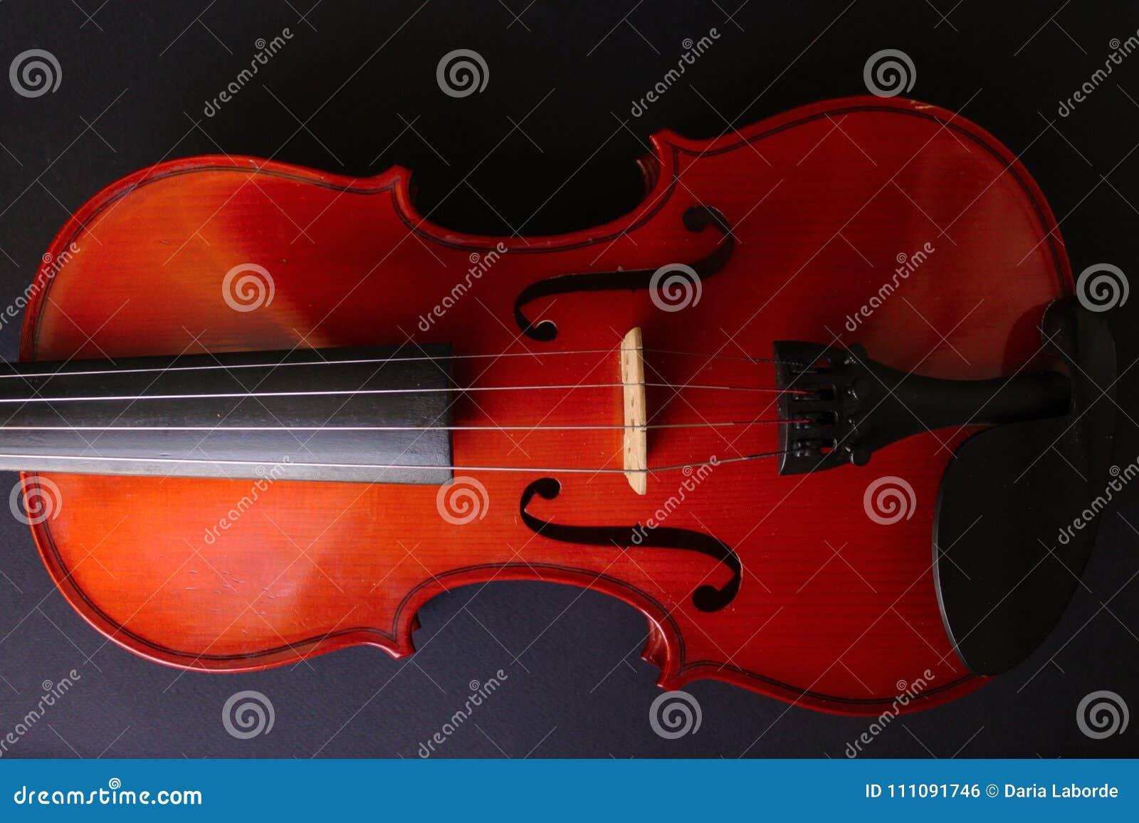 Musical Instrument Violin  Ancient Violin  Stringed