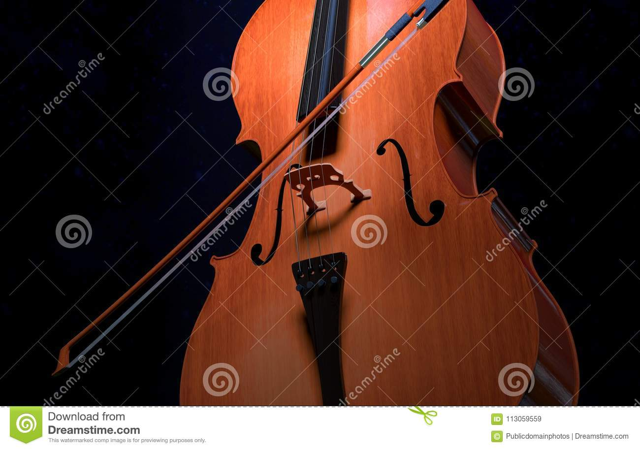 Musical Instrument Cello Double Bass Violin Family