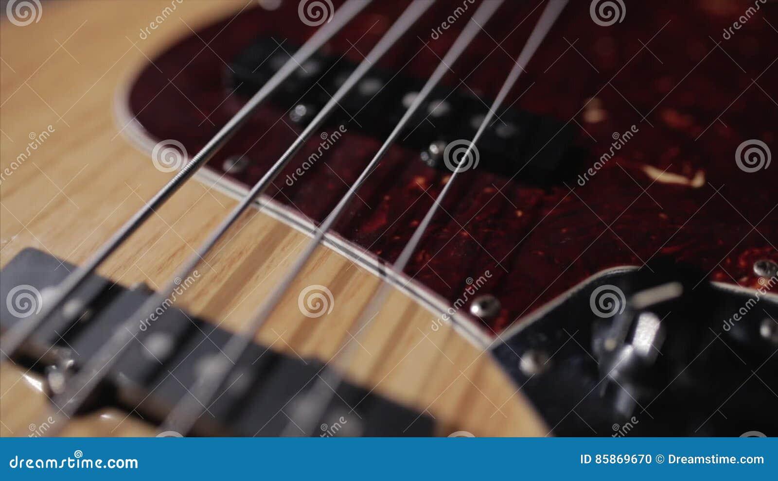 Musical Instrument  Equipment  Vintage Bass Guitar  Wooden
