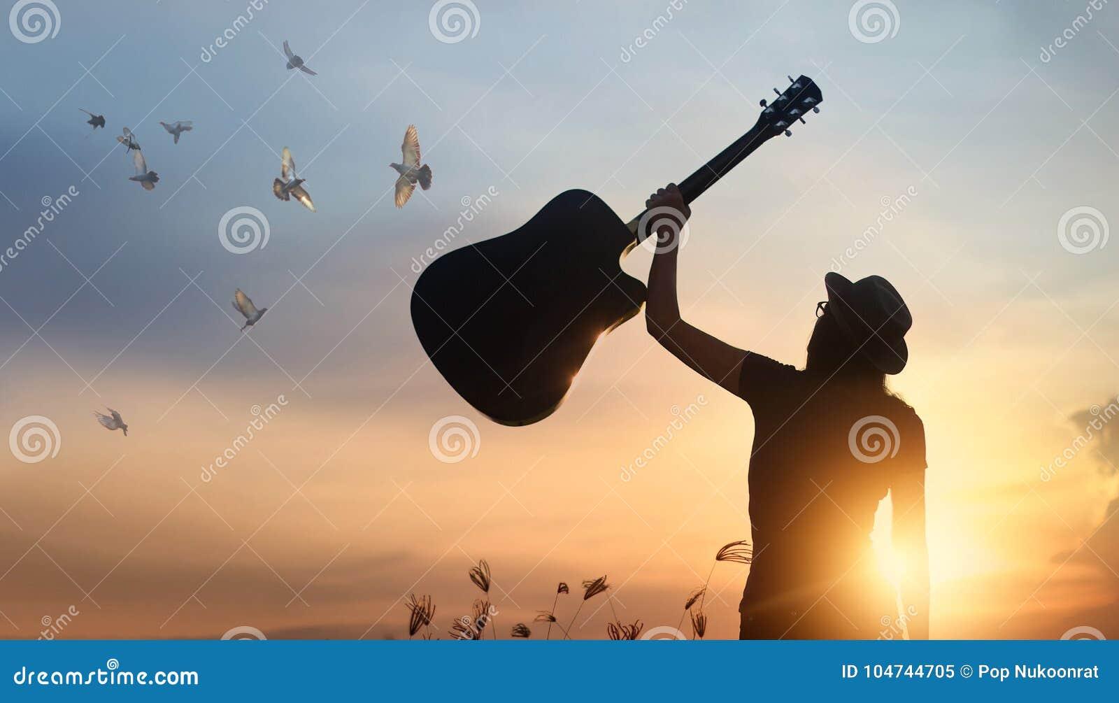 Musicus die gitaar lucht vrije vogels van silhouet fokken