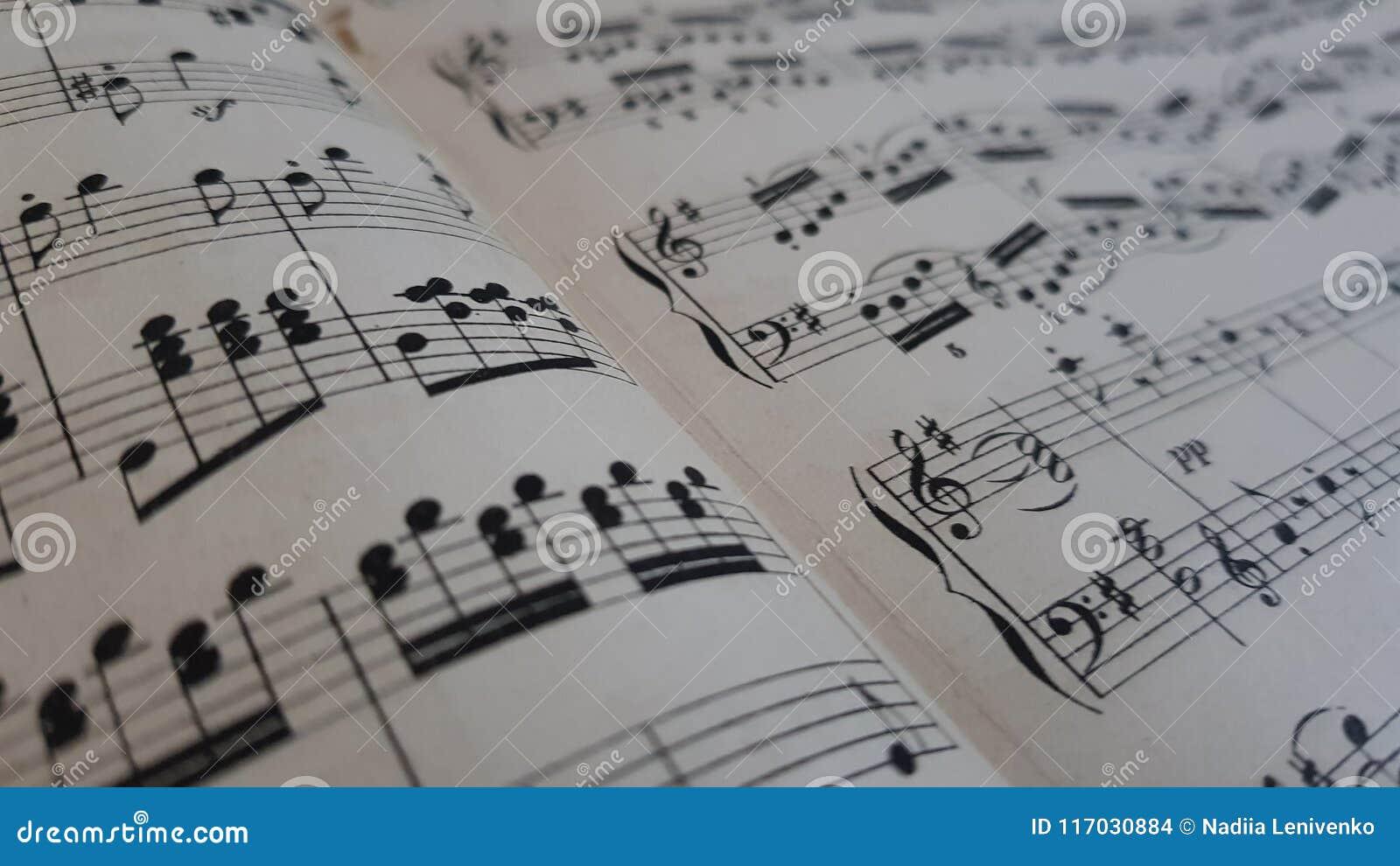 Musikalische Anmerkungen