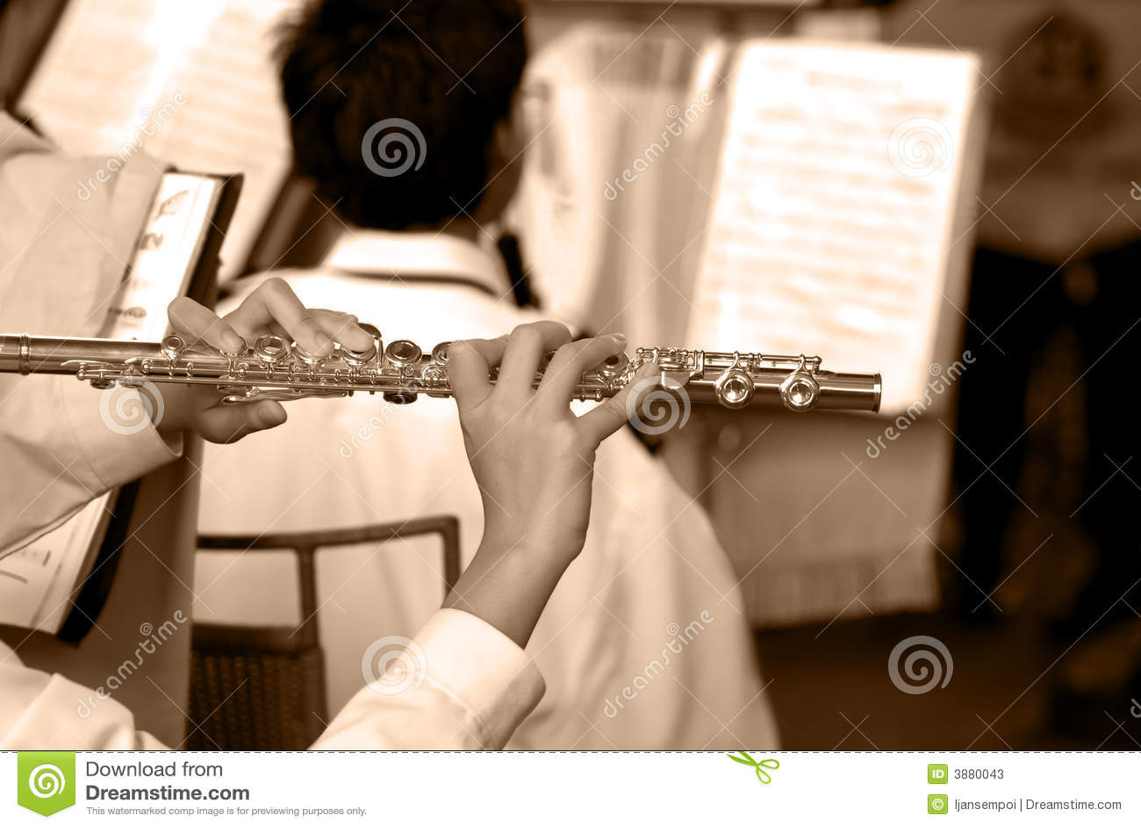 Musikalisches Band