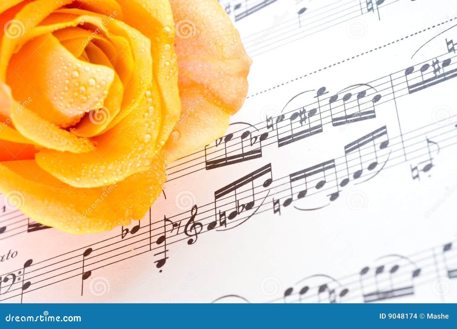 Musikaliskt ark