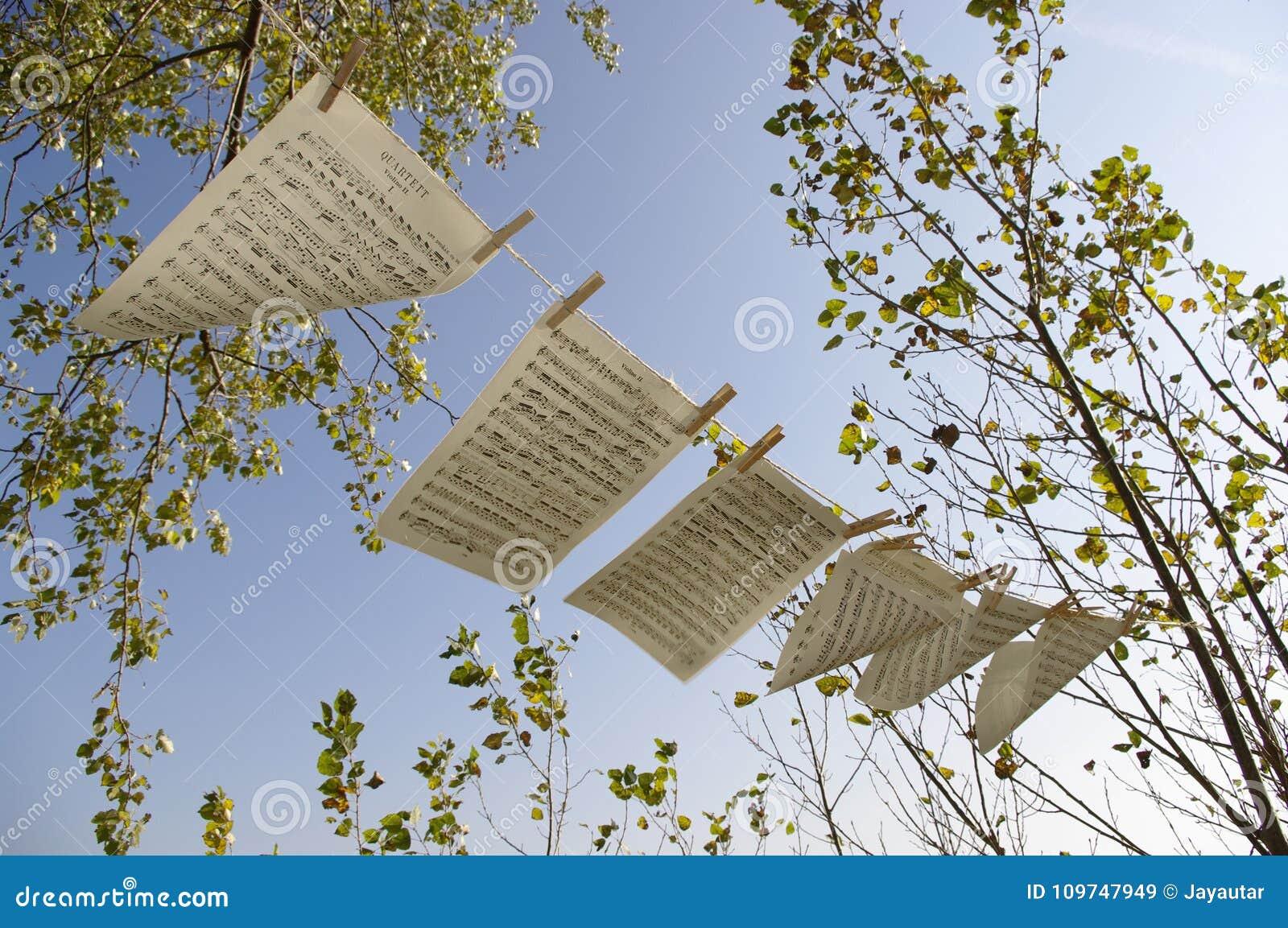 Musique de feuille dans le vent