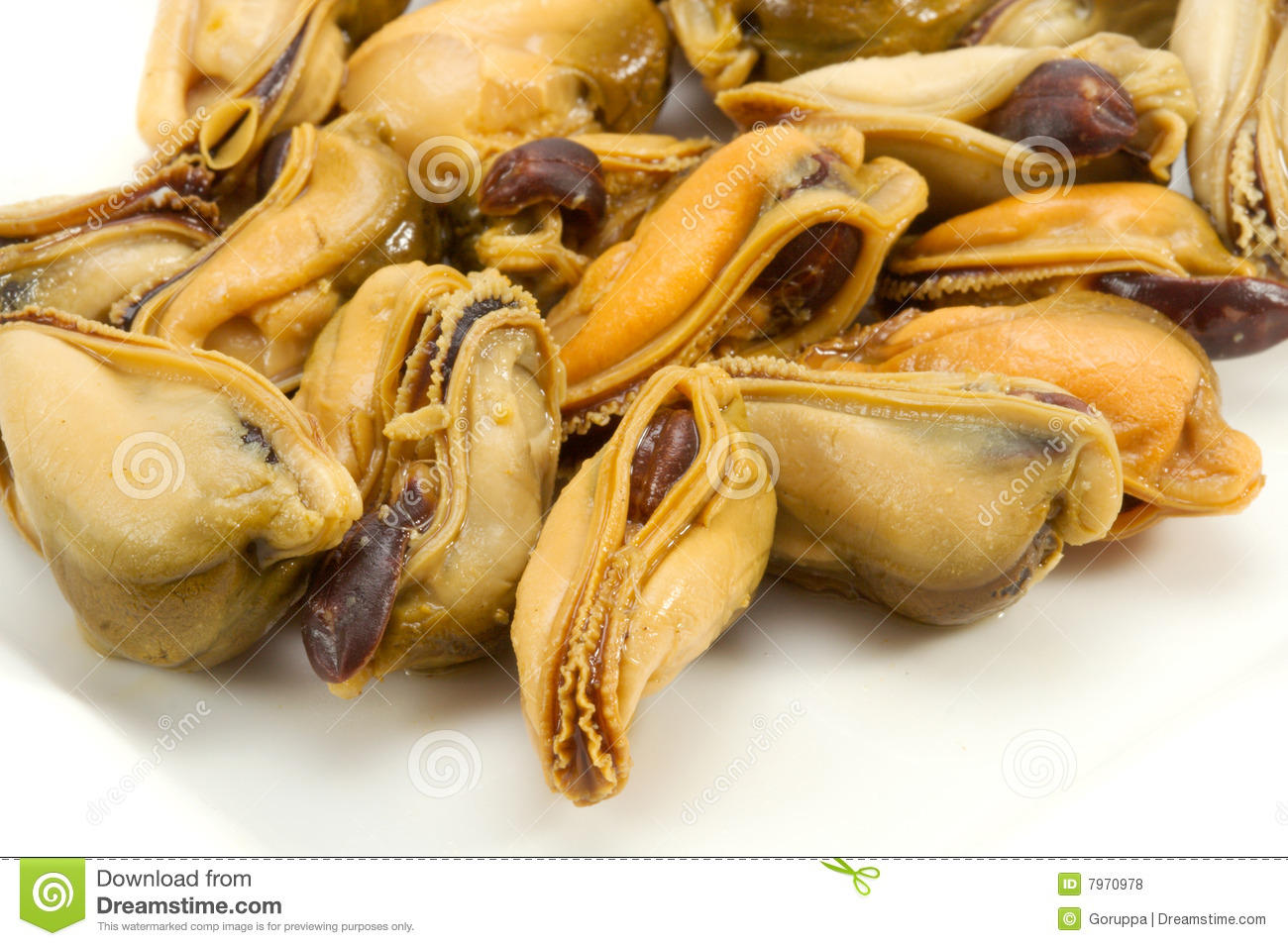 The cleared and pickled mussels on a white background.