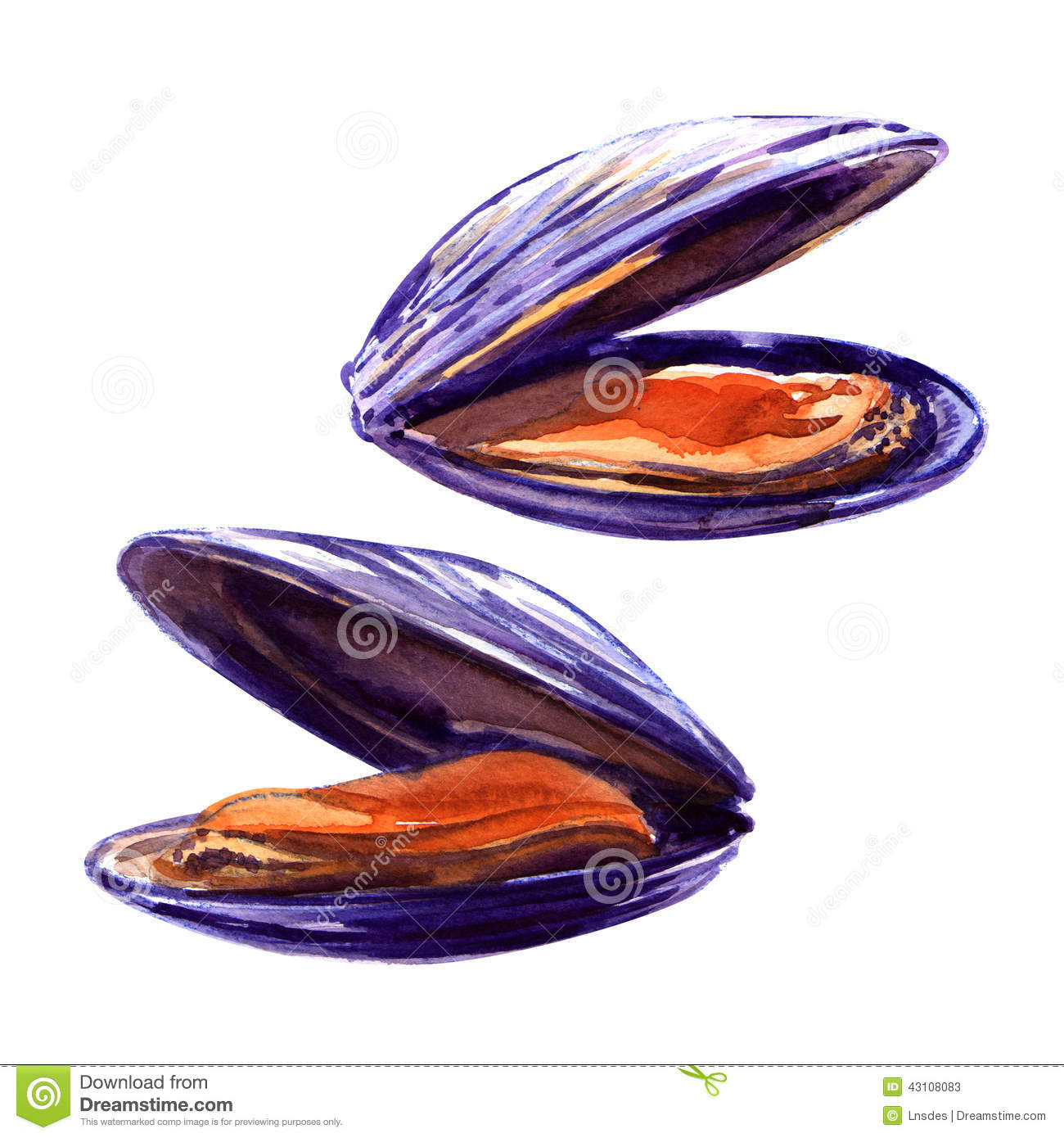 Mussels Stock Illustration - Image: 43108083 Golf Ball On Tee Clipart
