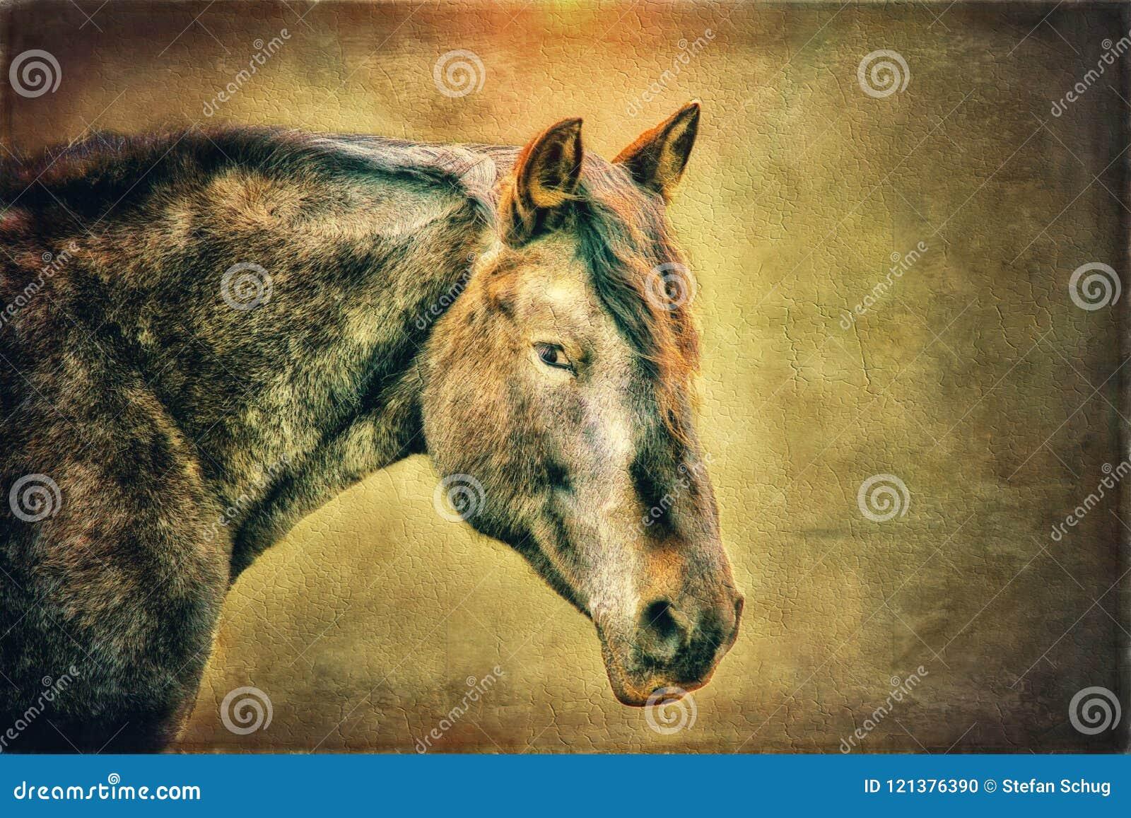 Mustango - Art Composite