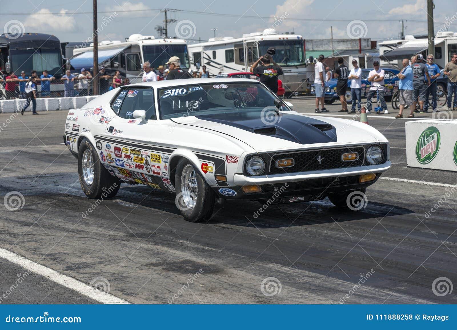 Mustango mach1 del vado del vintage en la línea de salida