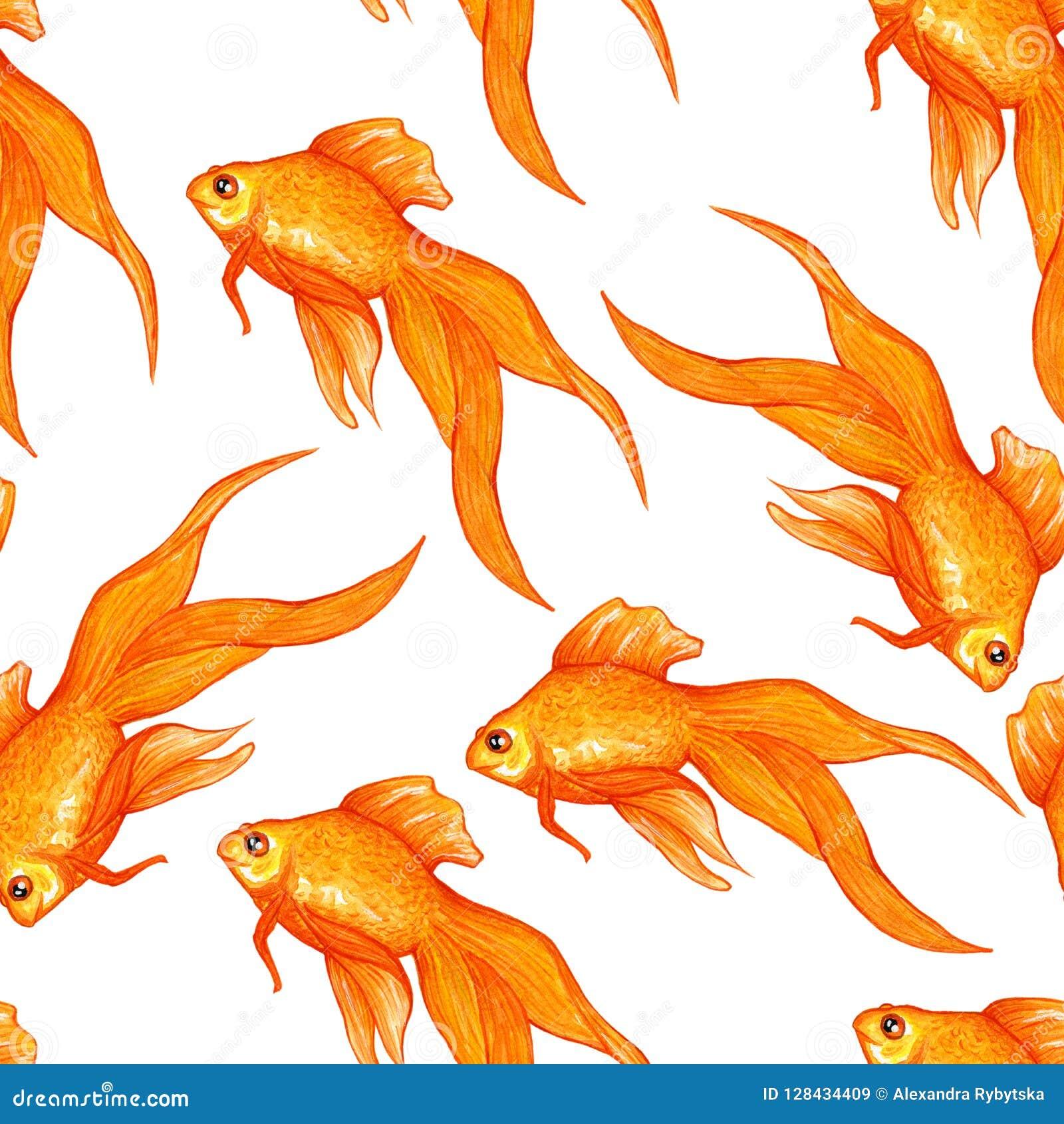 Muster mit Goldfisch auf weißem Hintergrund