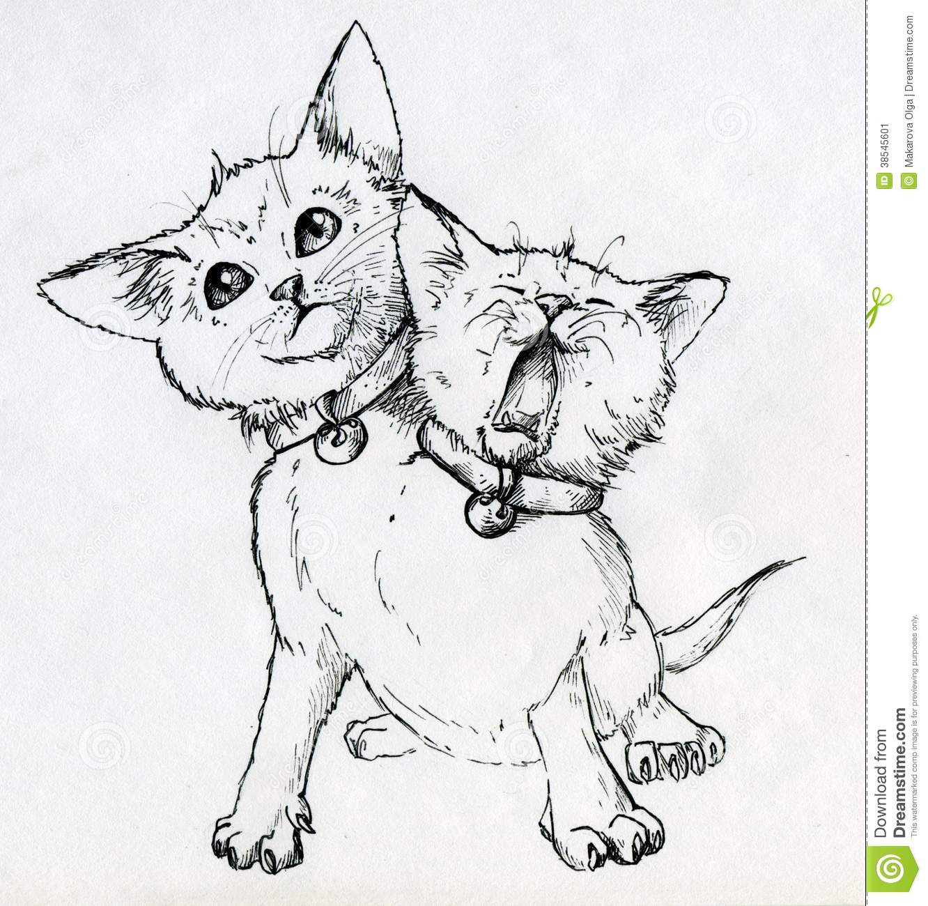... Very cute little pet wearing two collars with bells. Ink drawn sketch