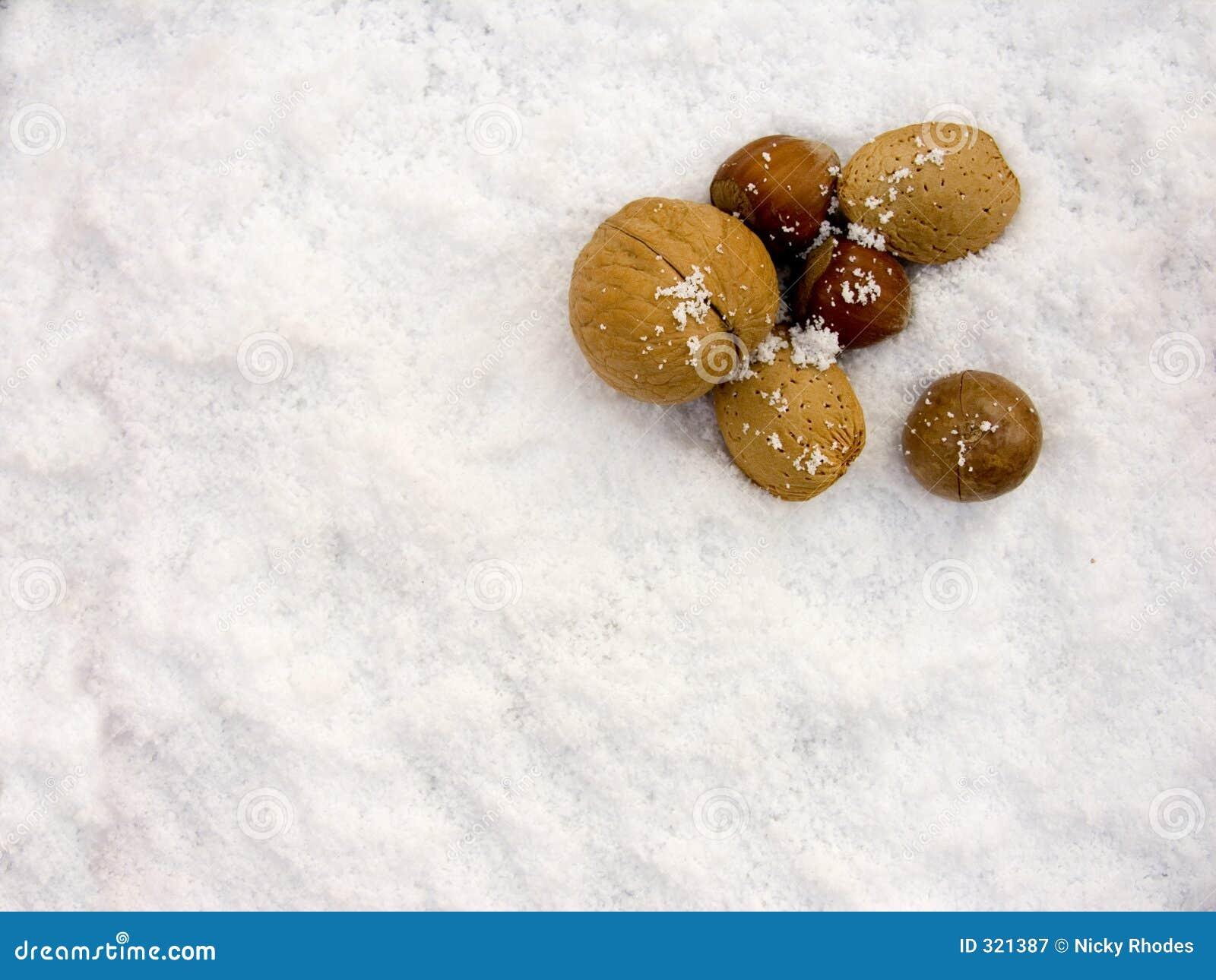 Muttern im Schnee