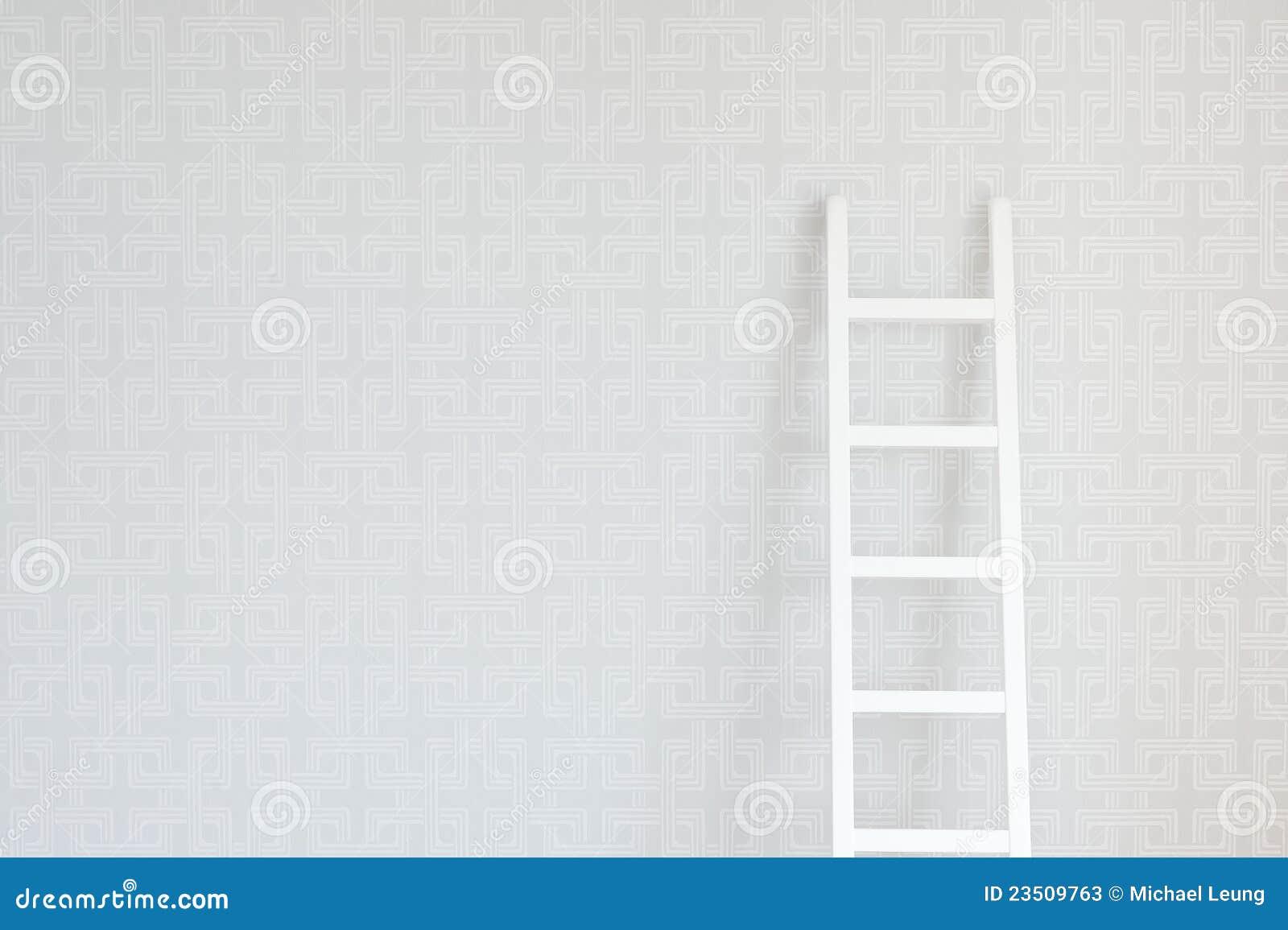 Muur en Ladder