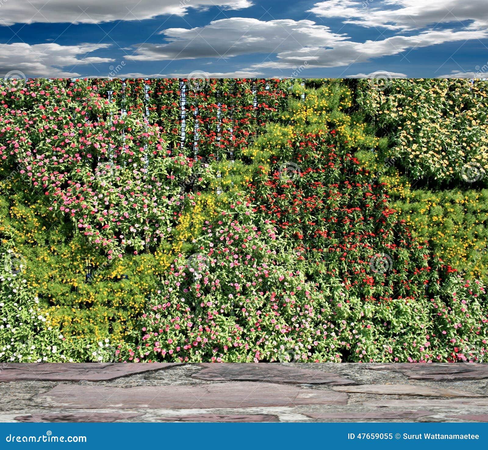Muur van de bloemen de verticale tuin stock afbeelding afbeelding 47659055 - Muur van de ingang ...